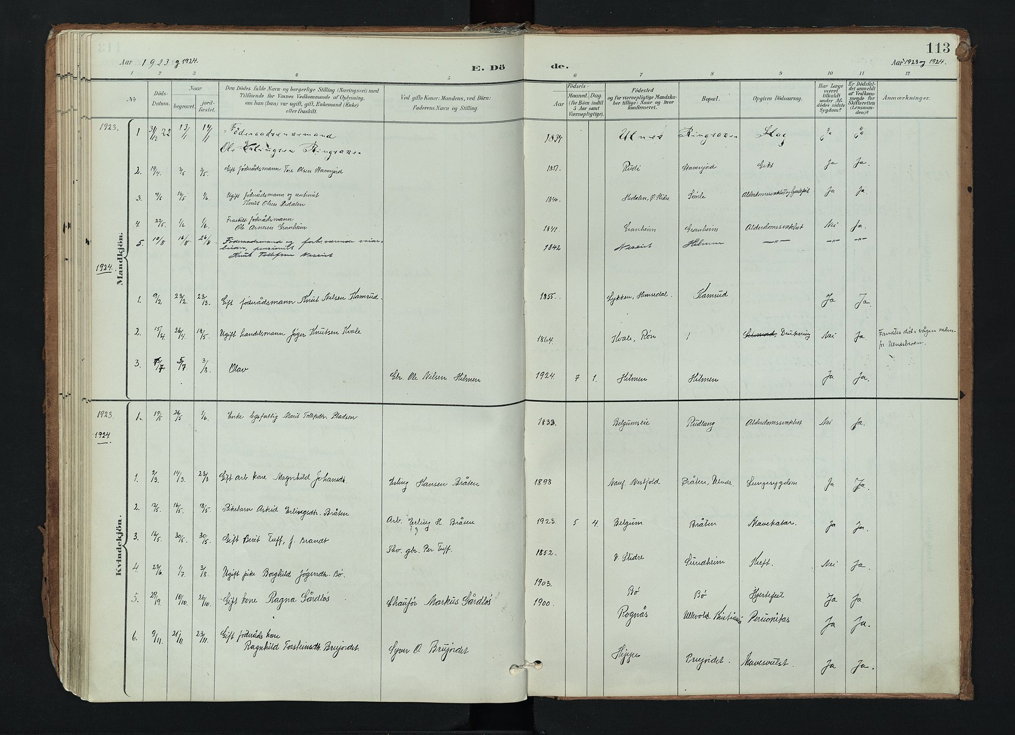 SAH, Nord-Aurdal prestekontor, Ministerialbok nr. 17, 1897-1926, s. 113