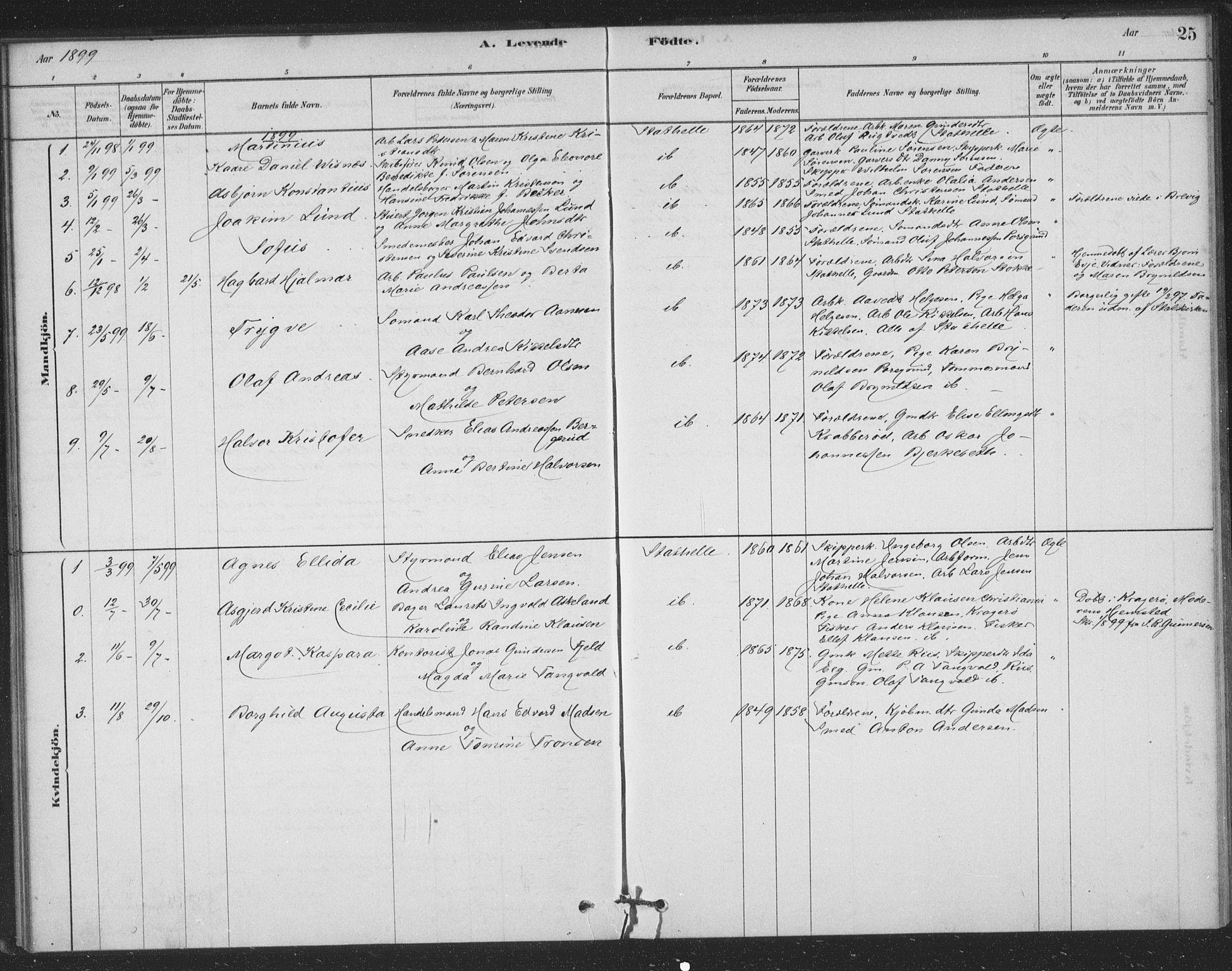 SAKO, Bamble kirkebøker, F/Fb/L0001: Ministerialbok nr. II 1, 1878-1899, s. 25