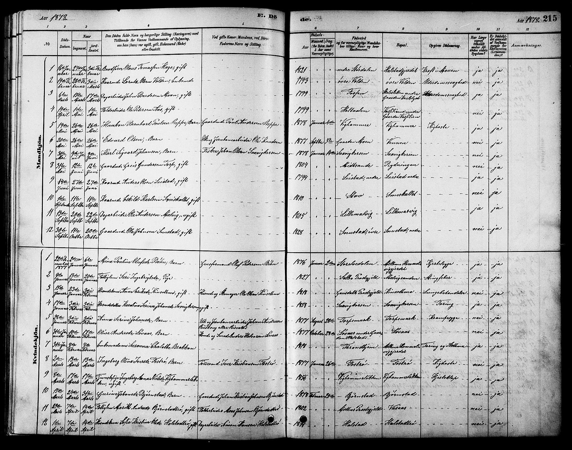 SAT, Ministerialprotokoller, klokkerbøker og fødselsregistre - Sør-Trøndelag, 616/L0423: Klokkerbok nr. 616C06, 1878-1903, s. 215