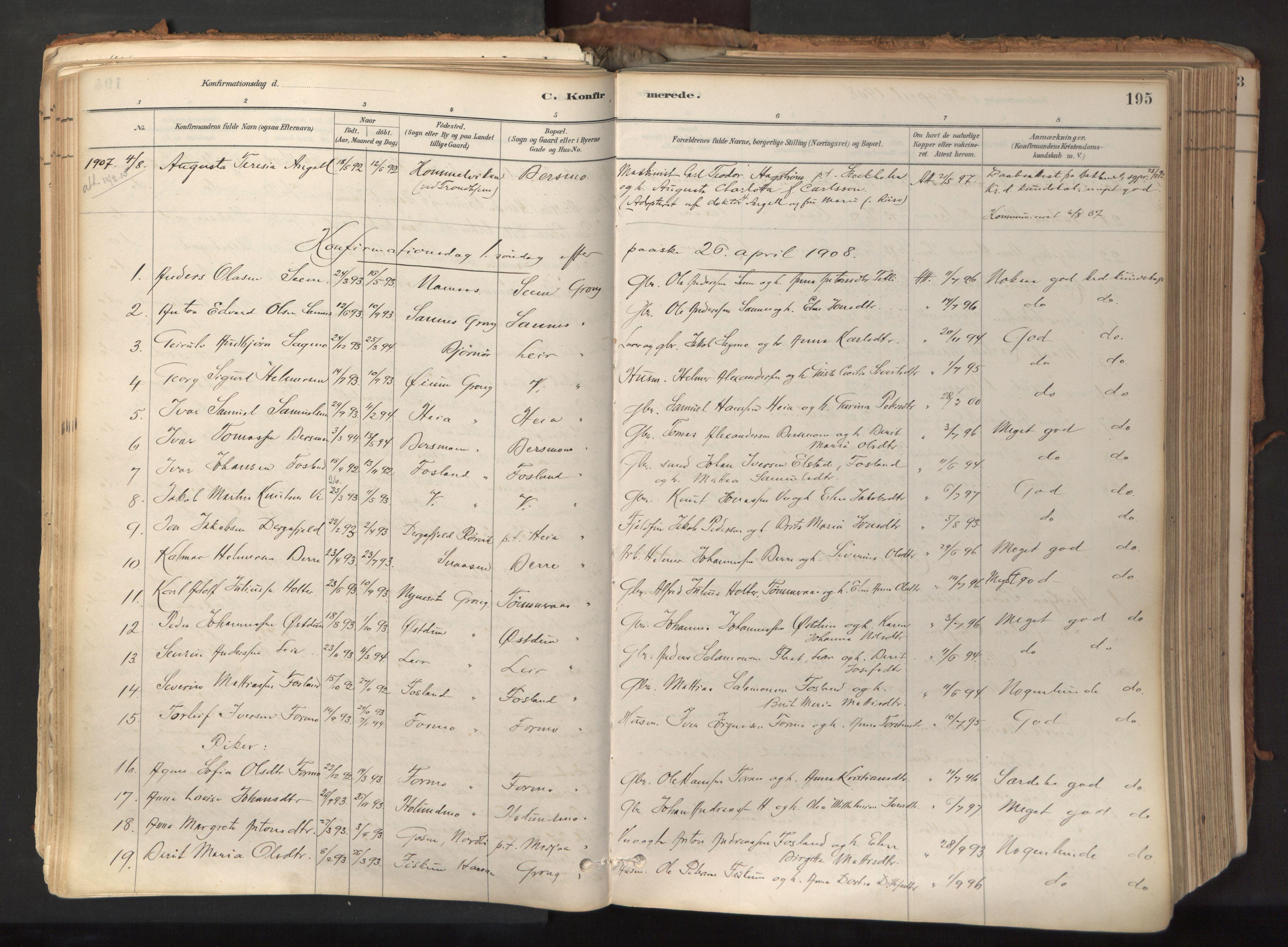 SAT, Ministerialprotokoller, klokkerbøker og fødselsregistre - Nord-Trøndelag, 758/L0519: Ministerialbok nr. 758A04, 1880-1926, s. 195