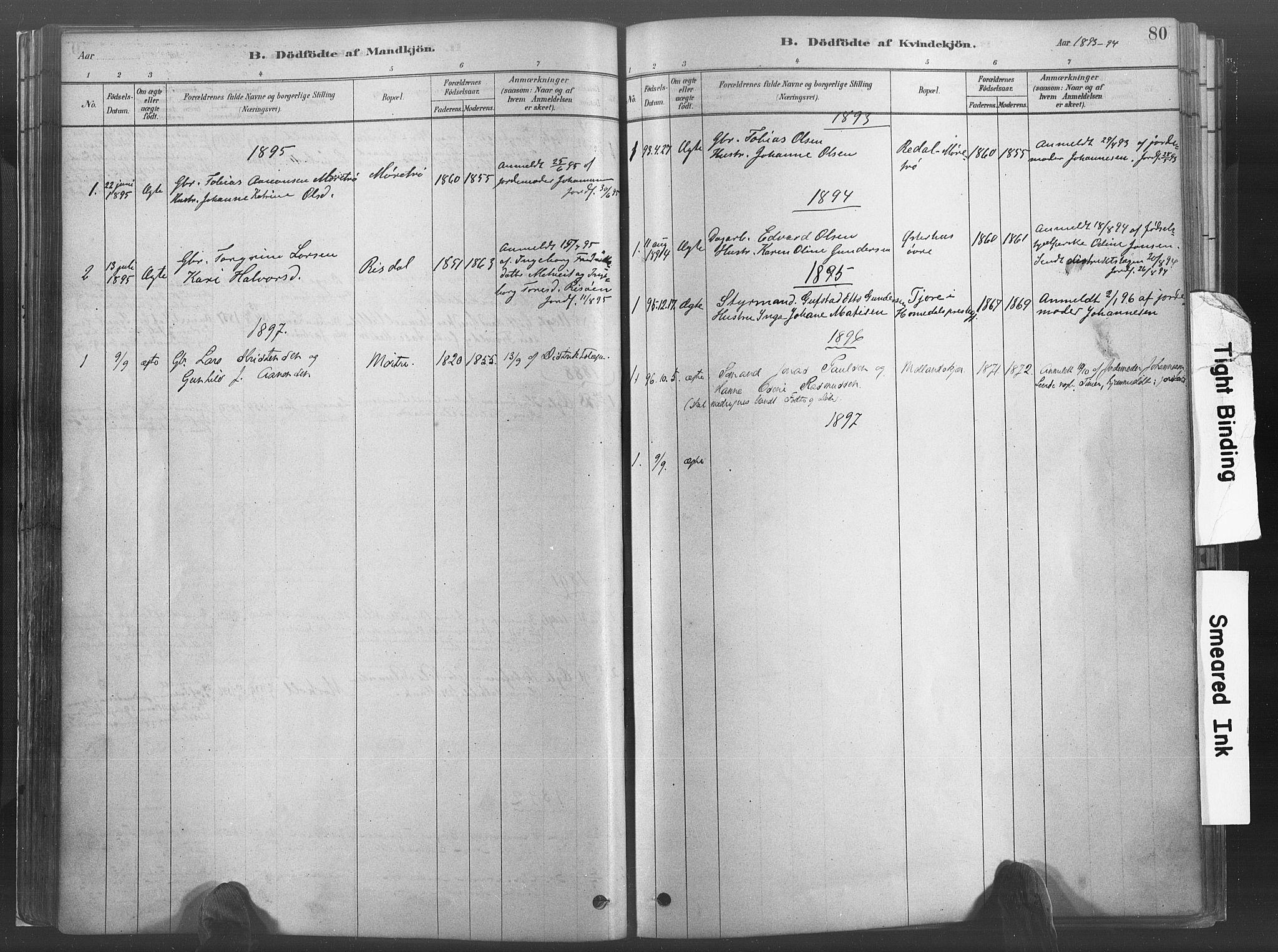 SAK, Hommedal sokneprestkontor, F/Fa/Fab/L0006: Ministerialbok nr. A 6, 1878-1897, s. 80