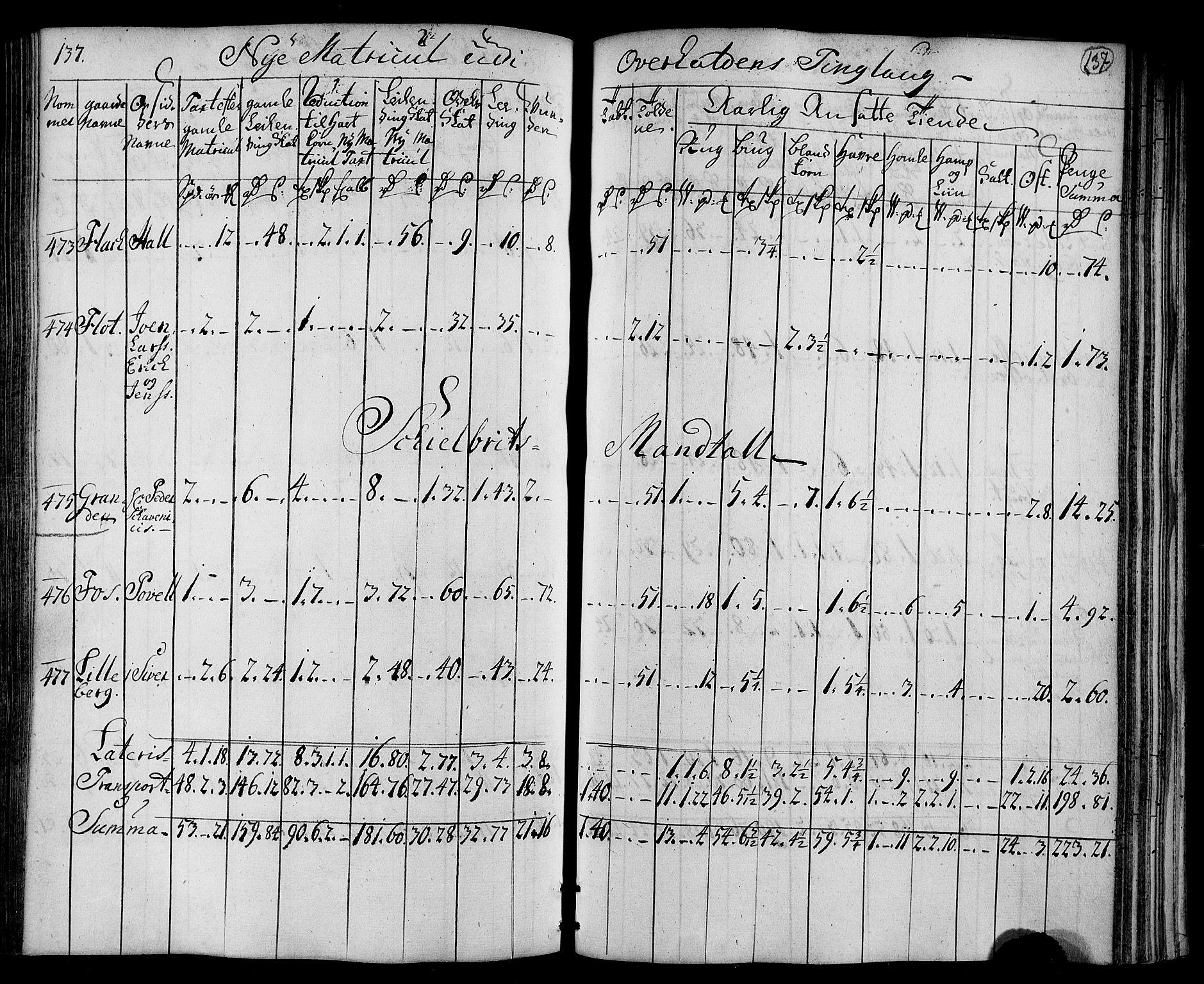 RA, Rentekammeret inntil 1814, Realistisk ordnet avdeling, N/Nb/Nbf/L0169: Namdalen matrikkelprotokoll, 1723, s. 136b-137a