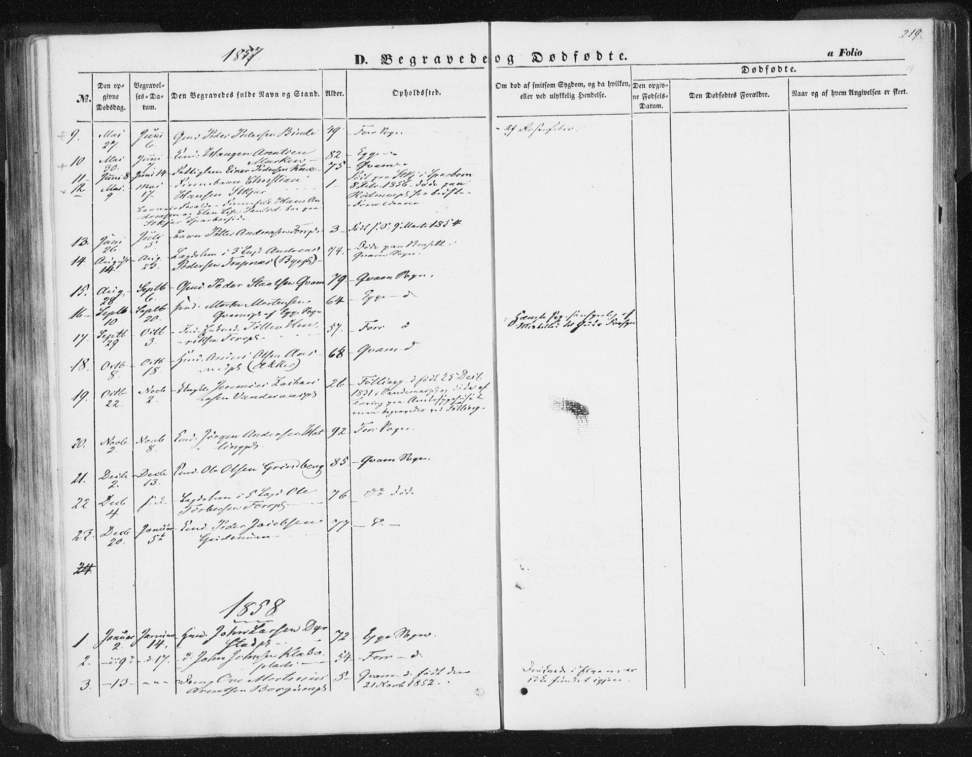 SAT, Ministerialprotokoller, klokkerbøker og fødselsregistre - Nord-Trøndelag, 746/L0446: Ministerialbok nr. 746A05, 1846-1859, s. 219