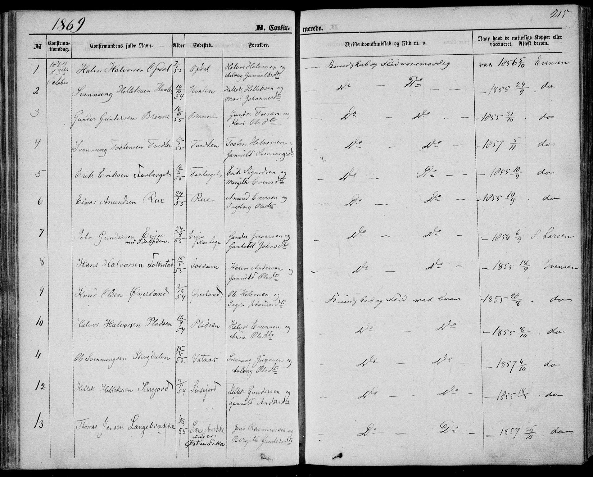 SAKO, Bø kirkebøker, F/Fa/L0009: Ministerialbok nr. 9, 1862-1879, s. 215