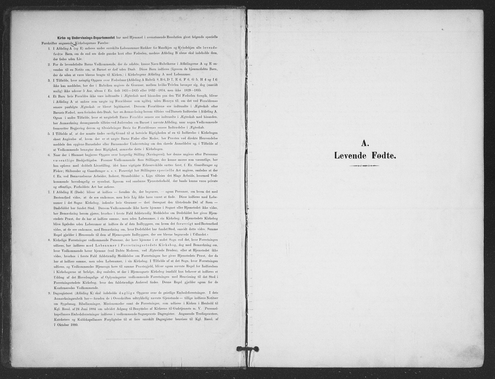 SAT, Ministerialprotokoller, klokkerbøker og fødselsregistre - Nordland, 866/L0939: Ministerialbok nr. 866A02, 1894-1906