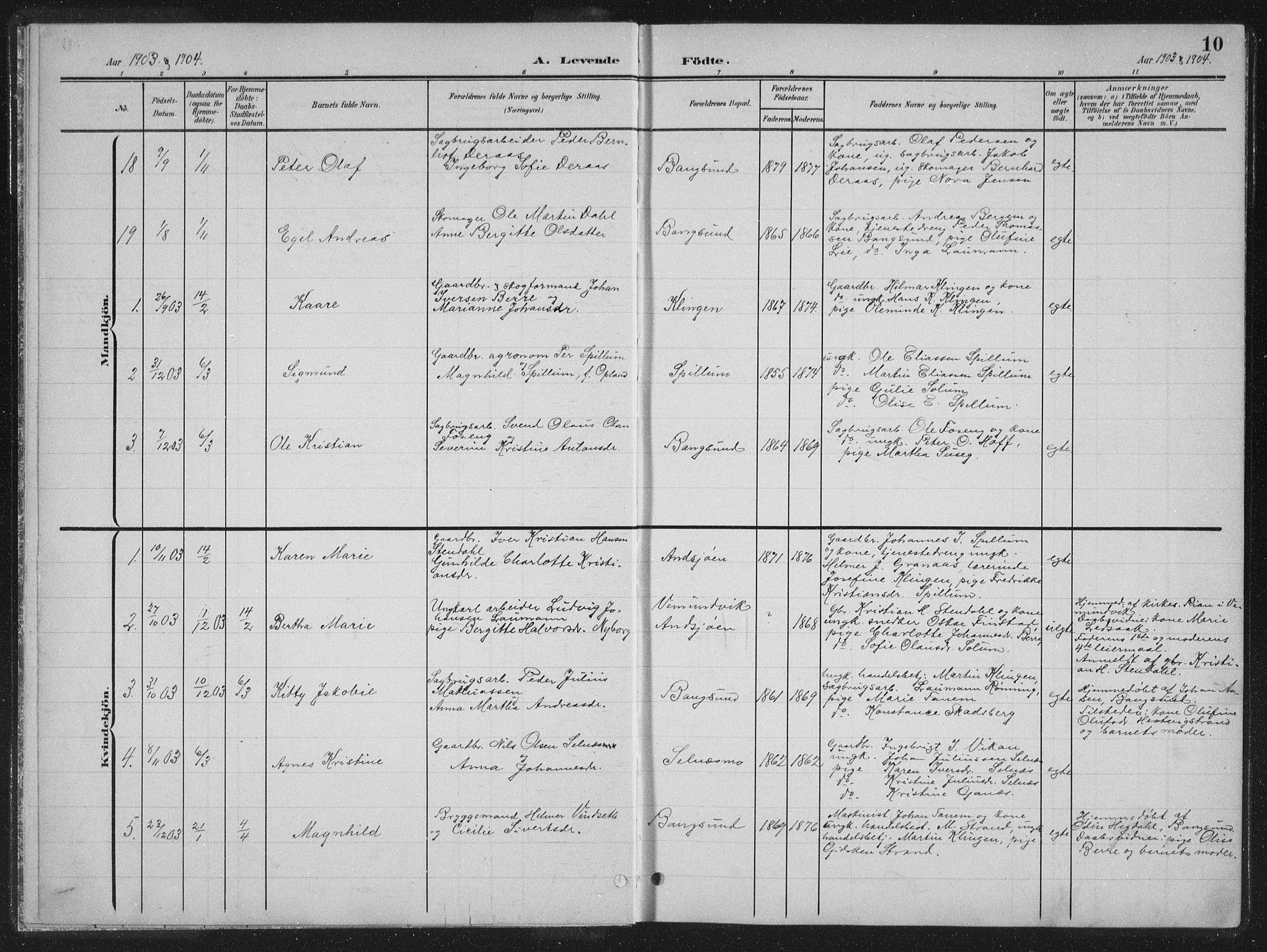 SAT, Ministerialprotokoller, klokkerbøker og fødselsregistre - Nord-Trøndelag, 770/L0591: Klokkerbok nr. 770C02, 1902-1940, s. 10