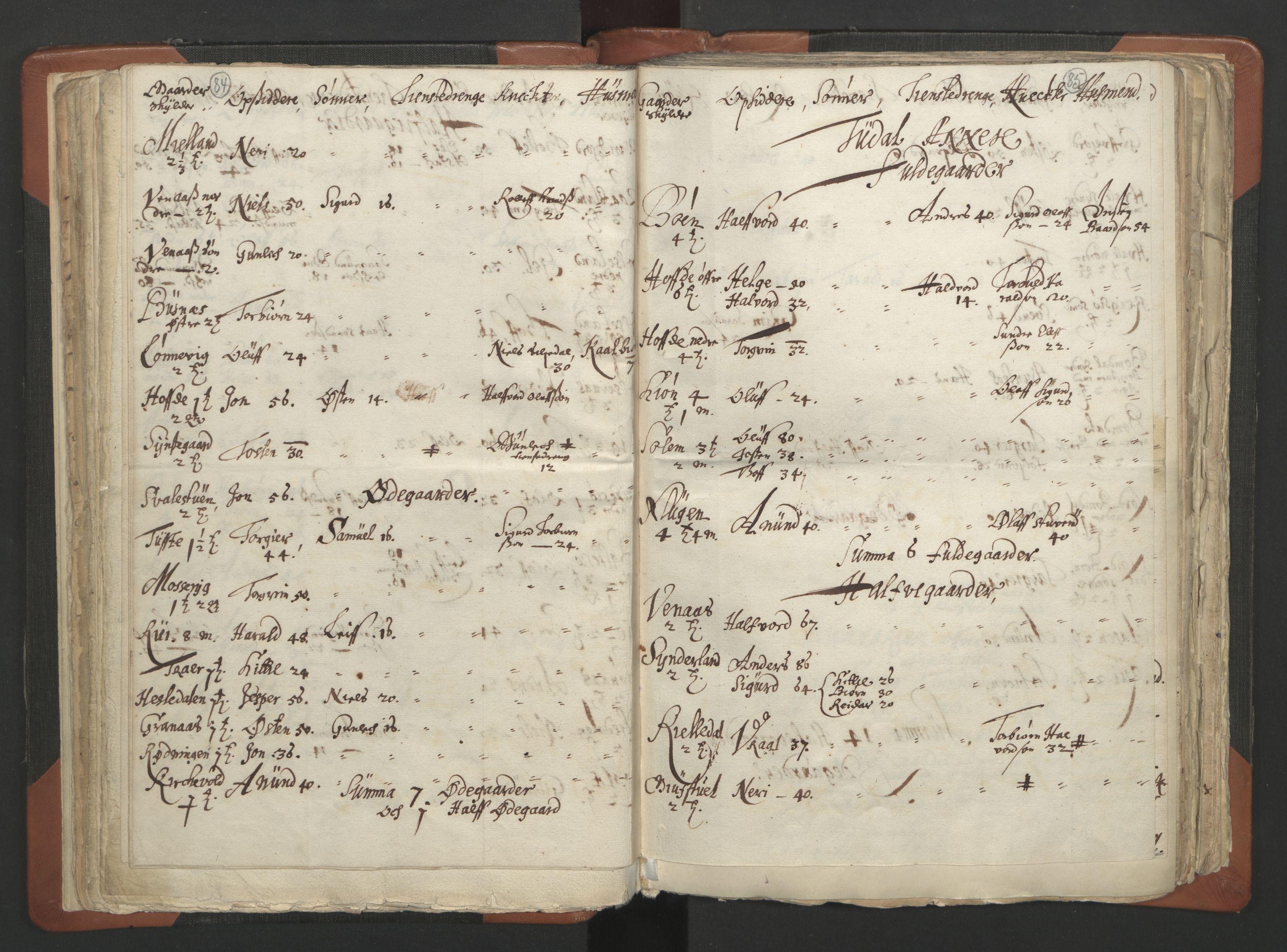 RA, Sogneprestenes manntall 1664-1666, nr. 12: Øvre Telemark prosti, Nedre Telemark prosti og Bamble prosti, 1664-1666, s. 84-85