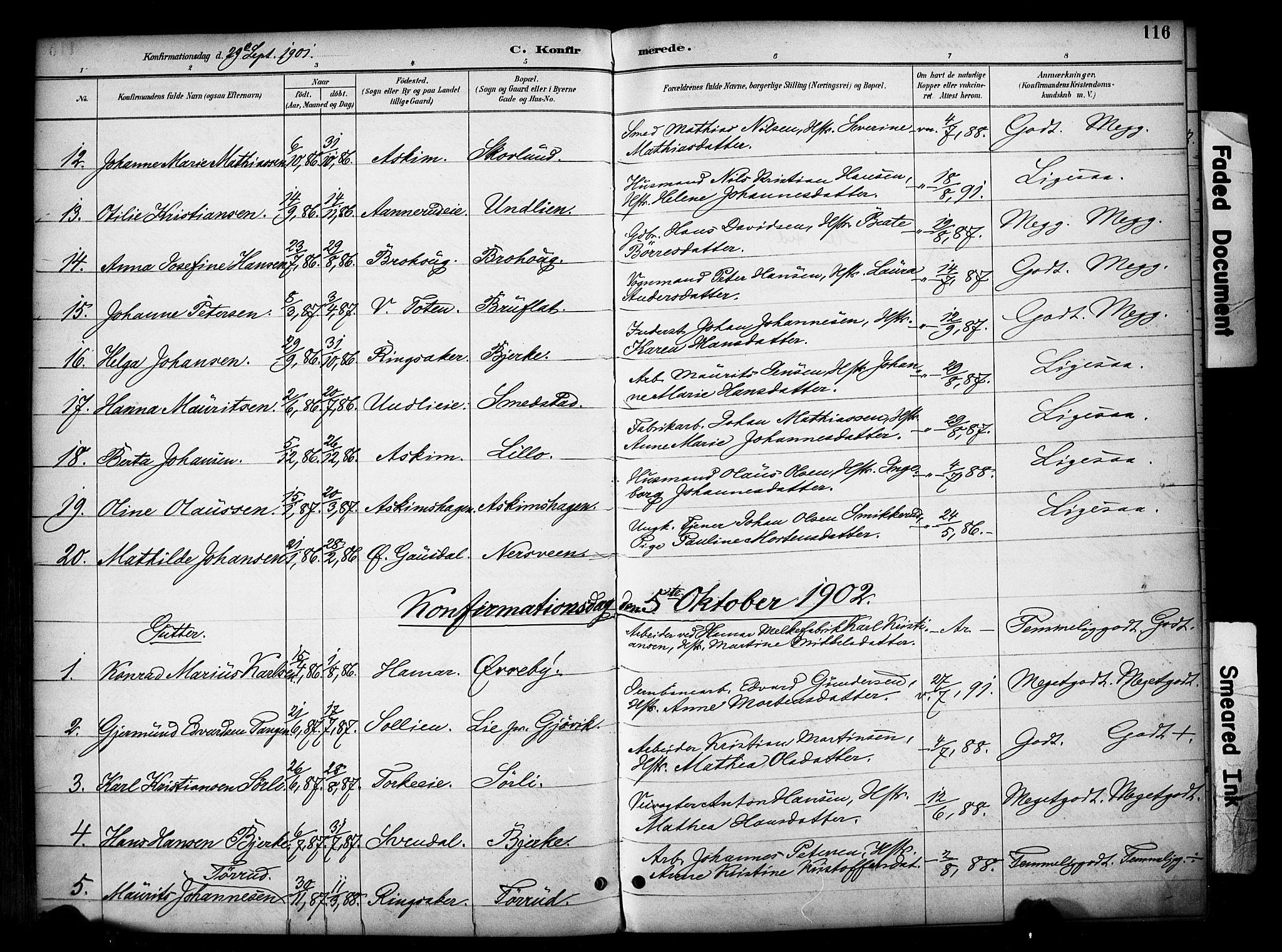 SAH, Vardal prestekontor, H/Ha/Haa/L0012: Ministerialbok nr. 12, 1893-1904, s. 116