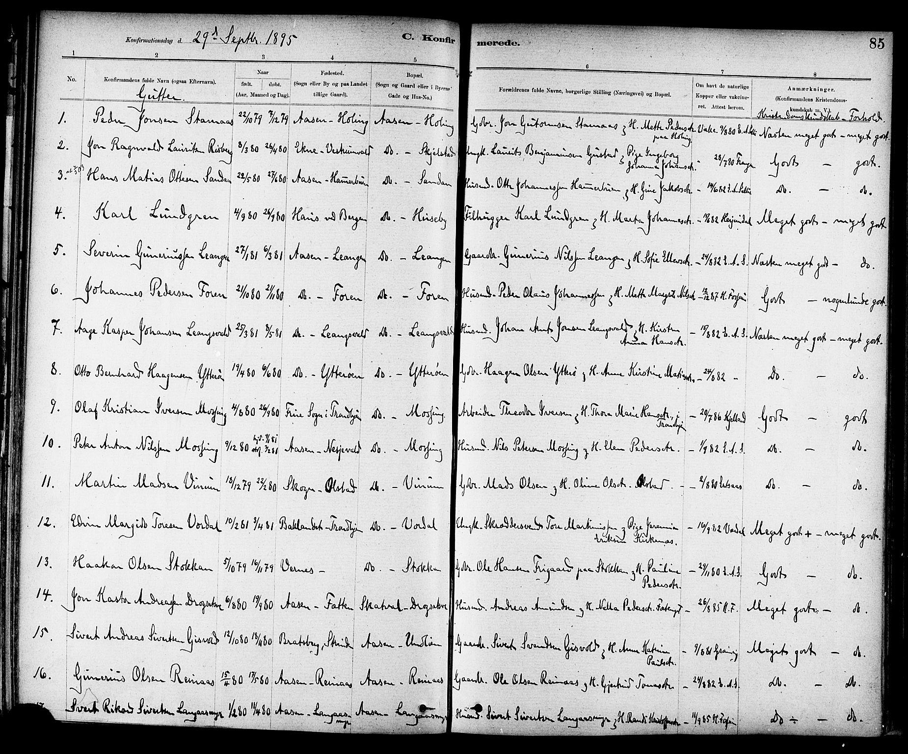 SAT, Ministerialprotokoller, klokkerbøker og fødselsregistre - Nord-Trøndelag, 714/L0130: Ministerialbok nr. 714A01, 1878-1895, s. 85