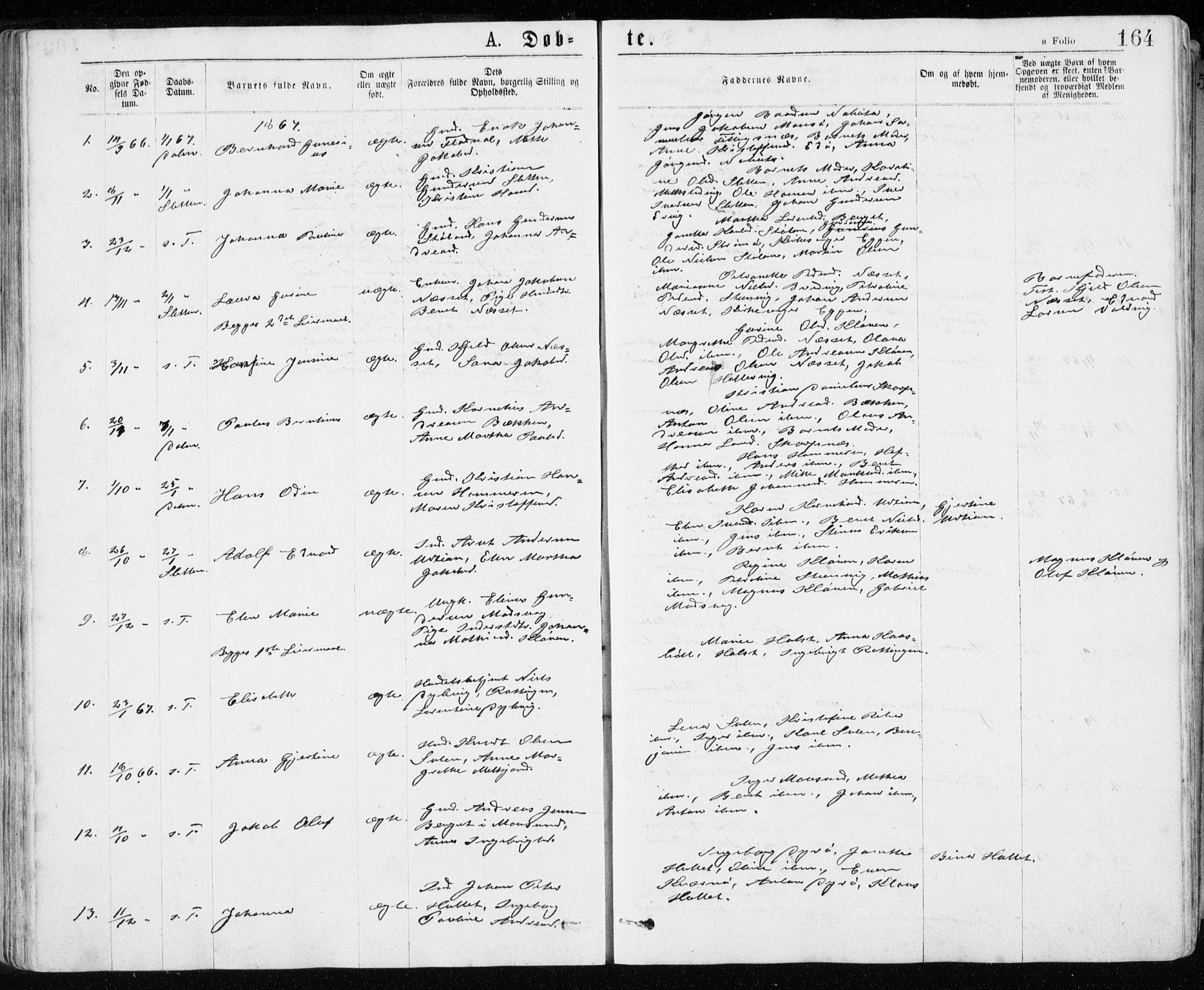 SAT, Ministerialprotokoller, klokkerbøker og fødselsregistre - Sør-Trøndelag, 640/L0576: Ministerialbok nr. 640A01, 1846-1876, s. 164