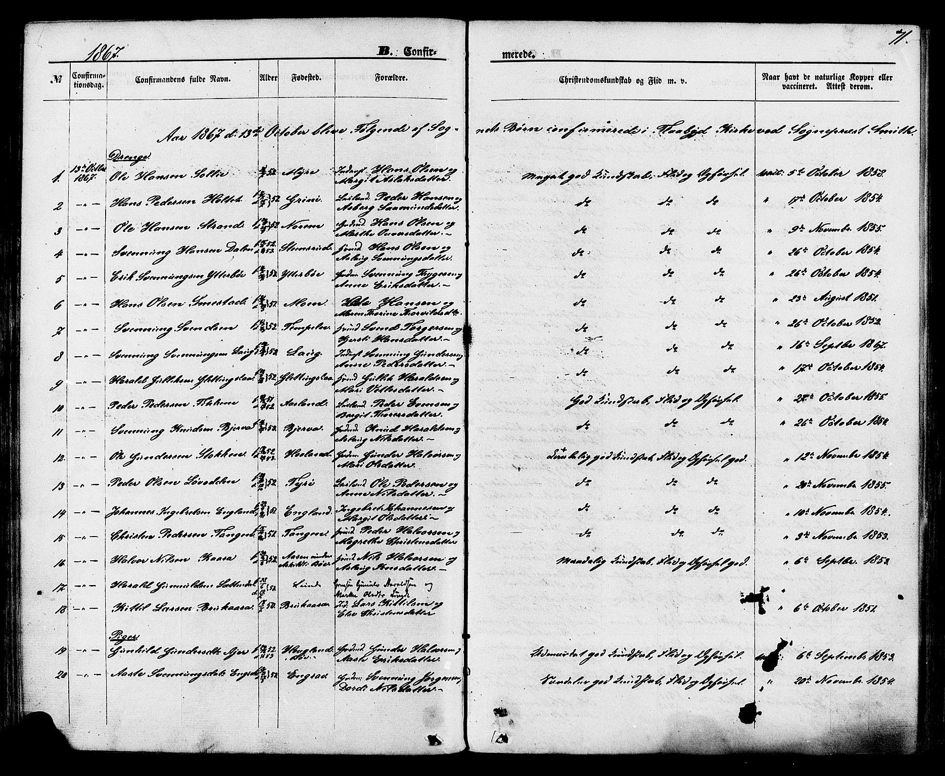 SAKO, Lunde kirkebøker, F/Fa/L0001: Ministerialbok nr. I 1, 1866-1883, s. 71