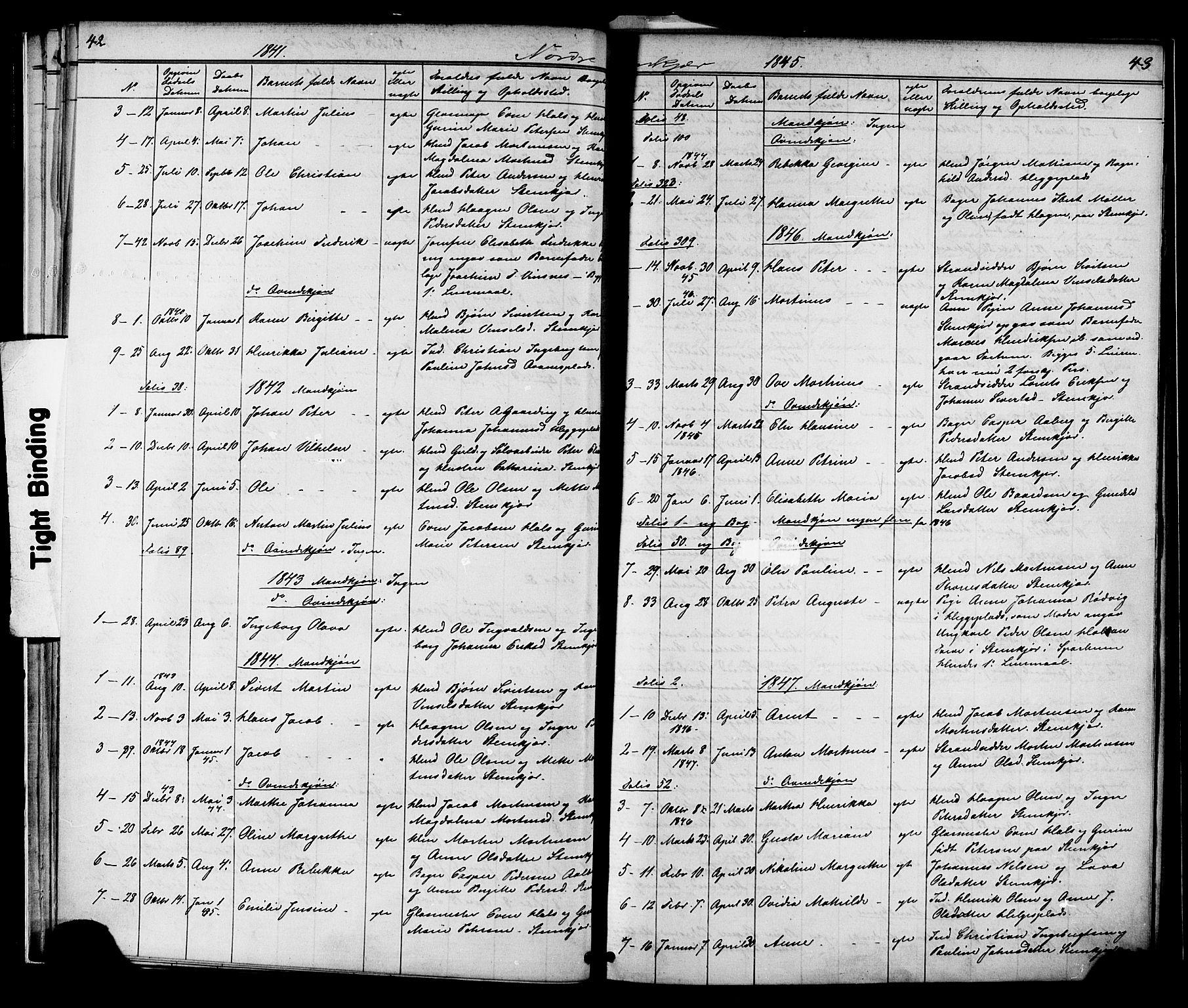 SAT, Ministerialprotokoller, klokkerbøker og fødselsregistre - Nord-Trøndelag, 739/L0367: Ministerialbok nr. 739A01 /2, 1838-1868, s. 42-43