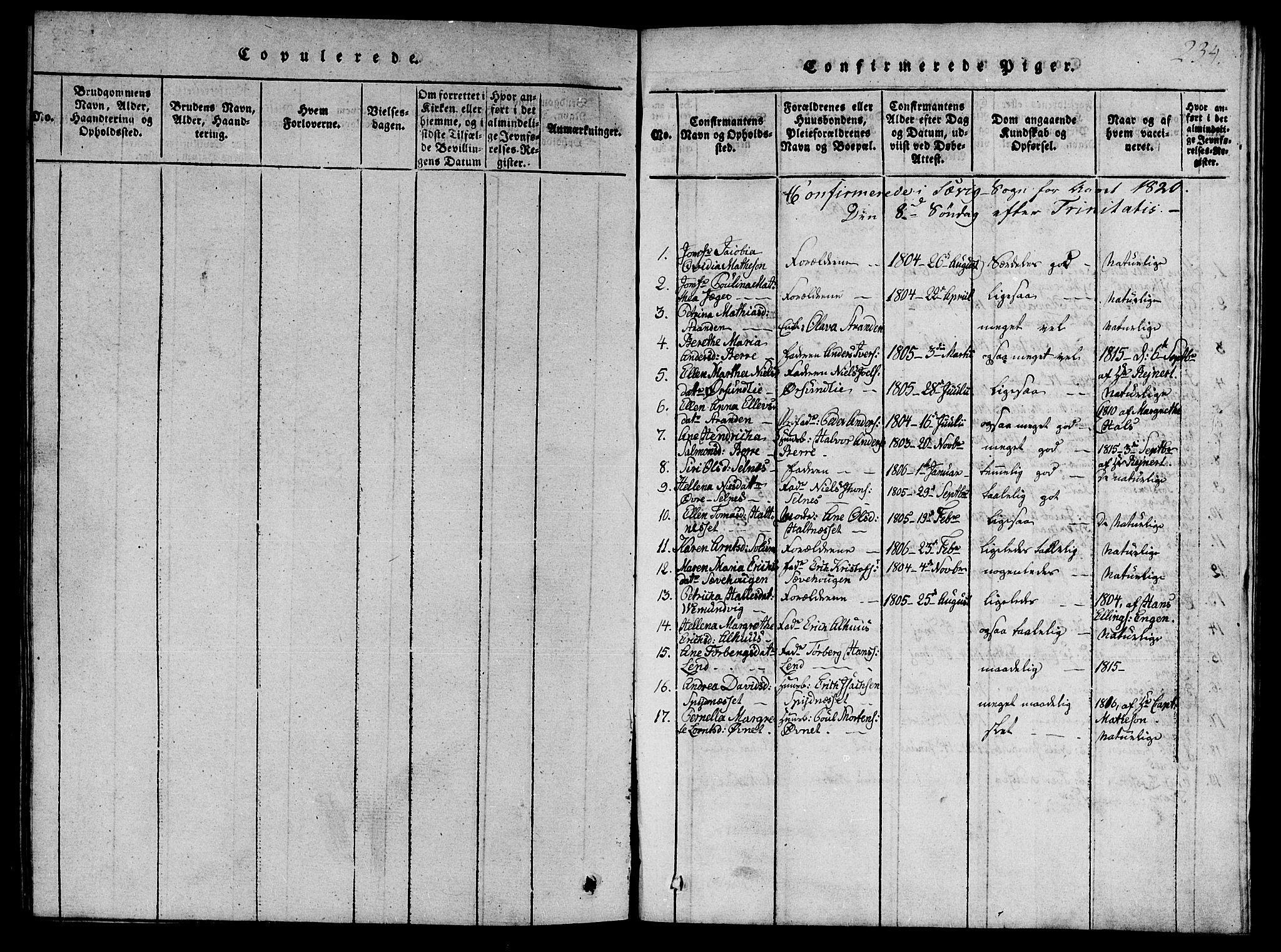 SAT, Ministerialprotokoller, klokkerbøker og fødselsregistre - Nord-Trøndelag, 770/L0588: Ministerialbok nr. 770A02, 1819-1823, s. 234