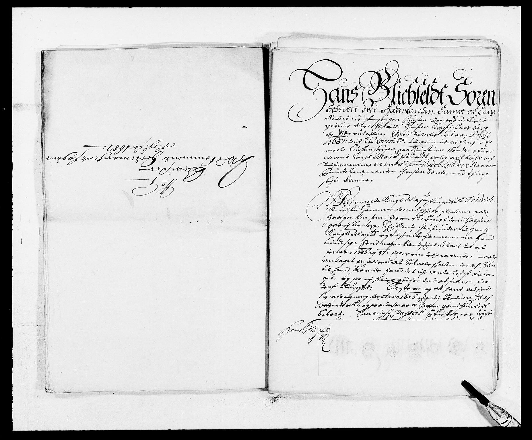 RA, Rentekammeret inntil 1814, Reviderte regnskaper, Fogderegnskap, R16/L1028: Fogderegnskap Hedmark, 1687, s. 163