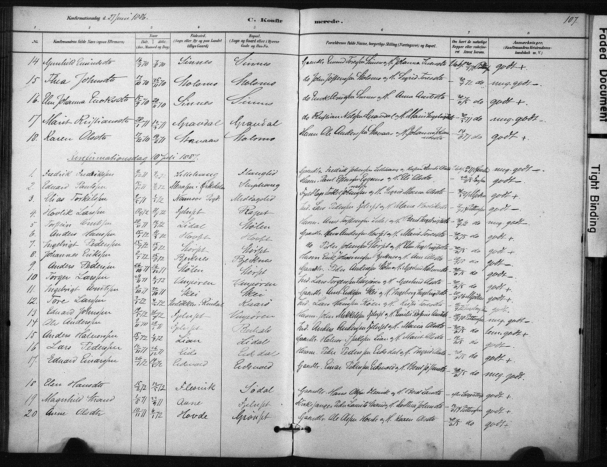SAT, Ministerialprotokoller, klokkerbøker og fødselsregistre - Sør-Trøndelag, 631/L0512: Ministerialbok nr. 631A01, 1879-1912, s. 107