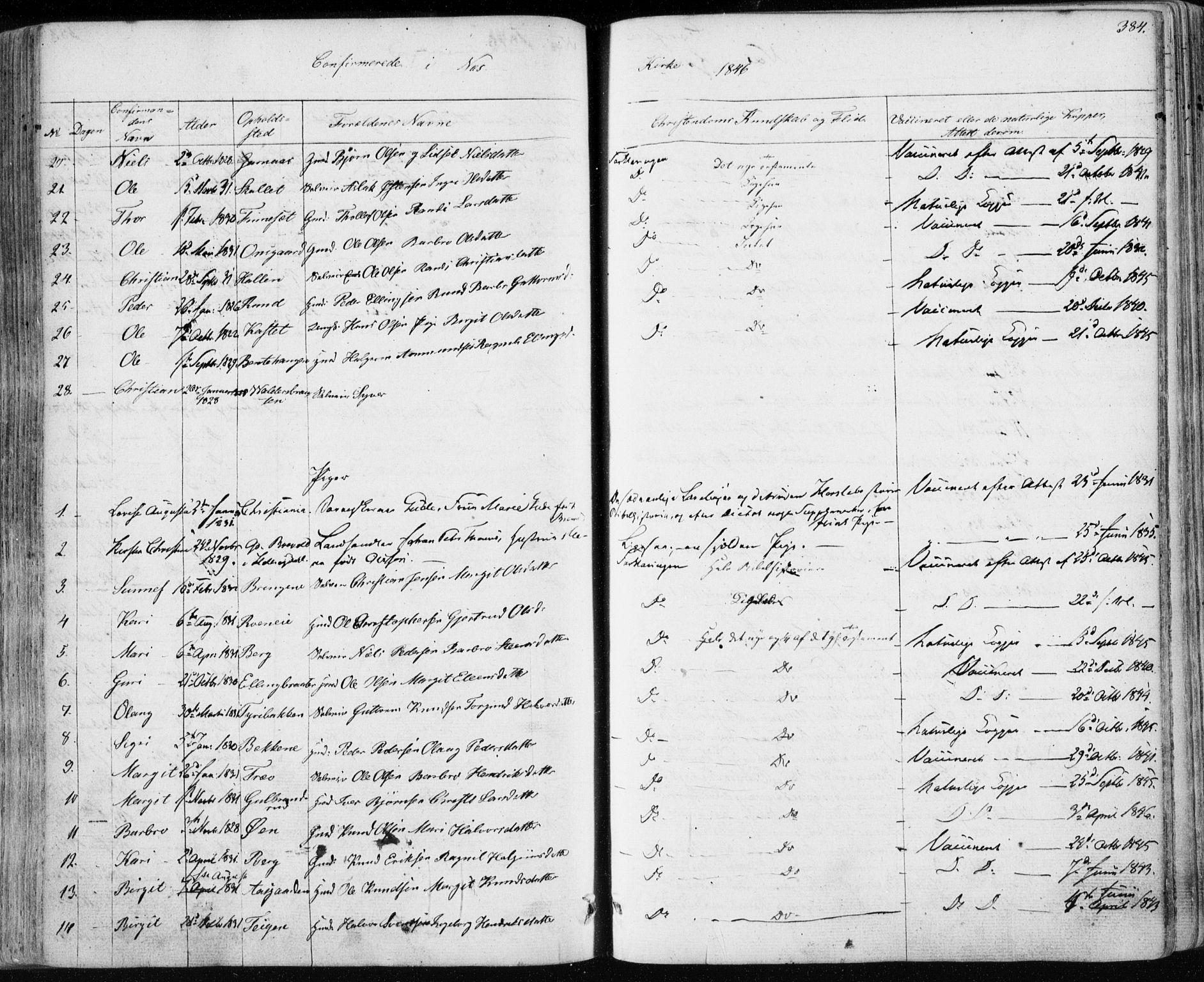 SAKO, Nes kirkebøker, F/Fa/L0009: Ministerialbok nr. 9, 1834-1863, s. 384