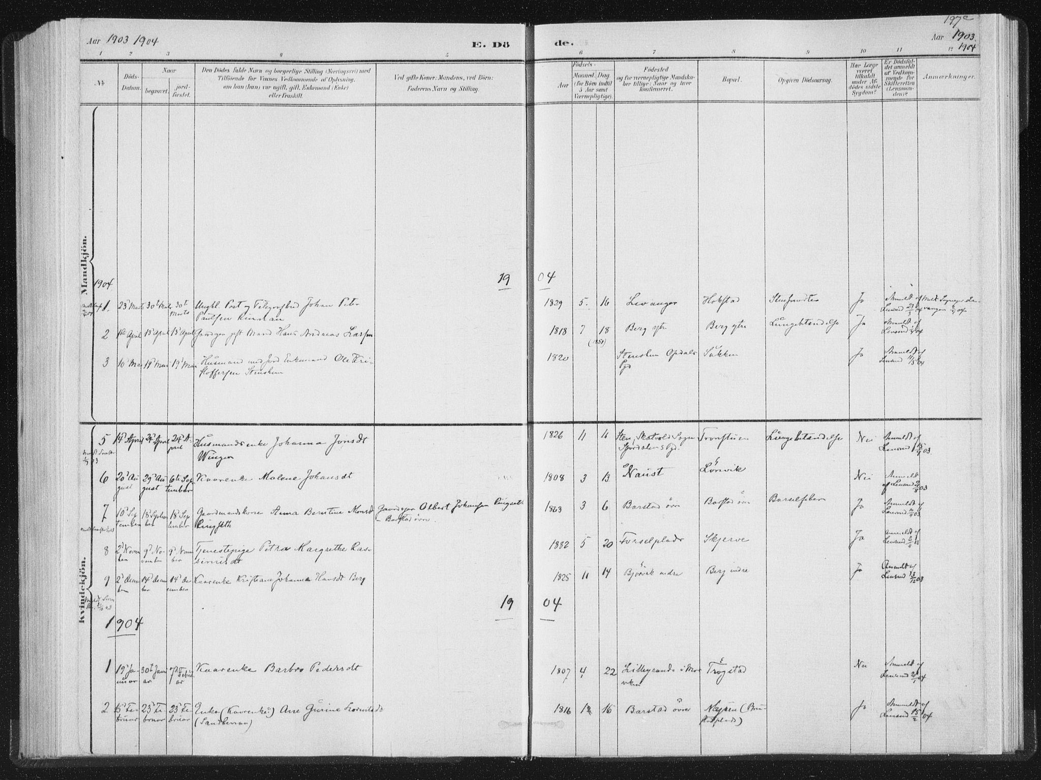 SAT, Ministerialprotokoller, klokkerbøker og fødselsregistre - Nord-Trøndelag, 722/L0220: Ministerialbok nr. 722A07, 1881-1908, s. 197c