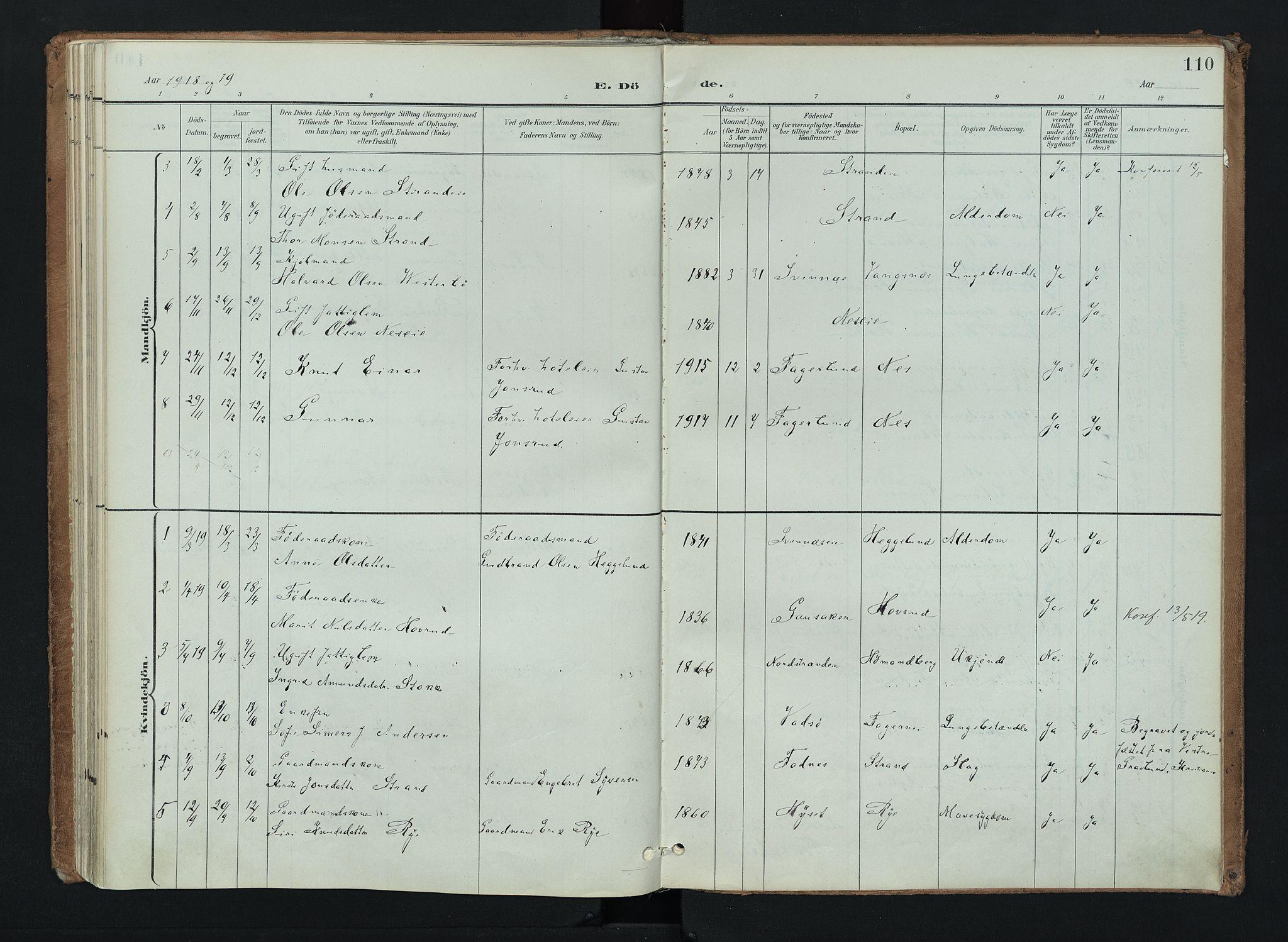SAH, Nord-Aurdal prestekontor, Ministerialbok nr. 16, 1897-1925, s. 110