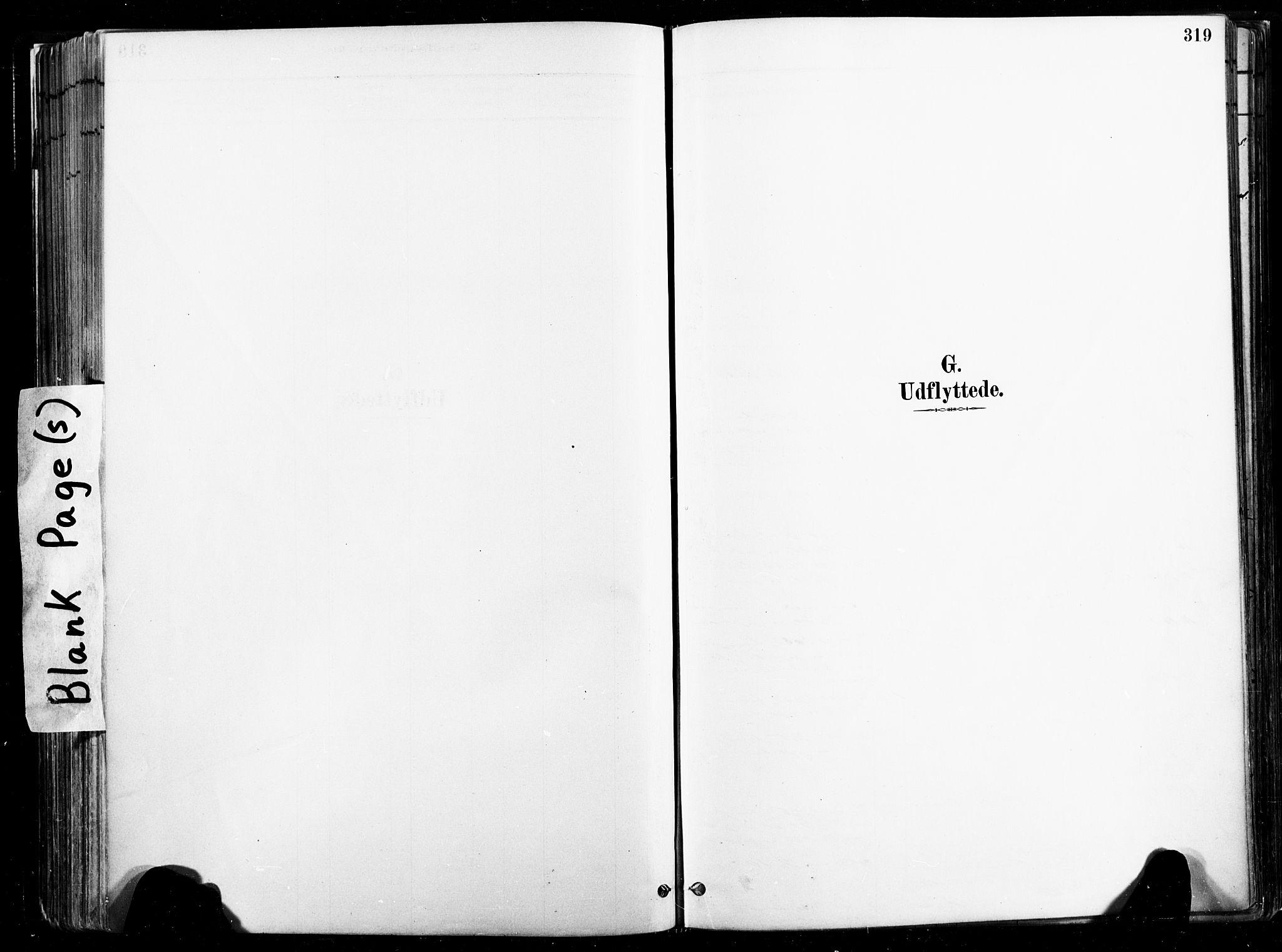 SAT, Ministerialprotokoller, klokkerbøker og fødselsregistre - Nord-Trøndelag, 735/L0351: Ministerialbok nr. 735A10, 1884-1908, s. 319