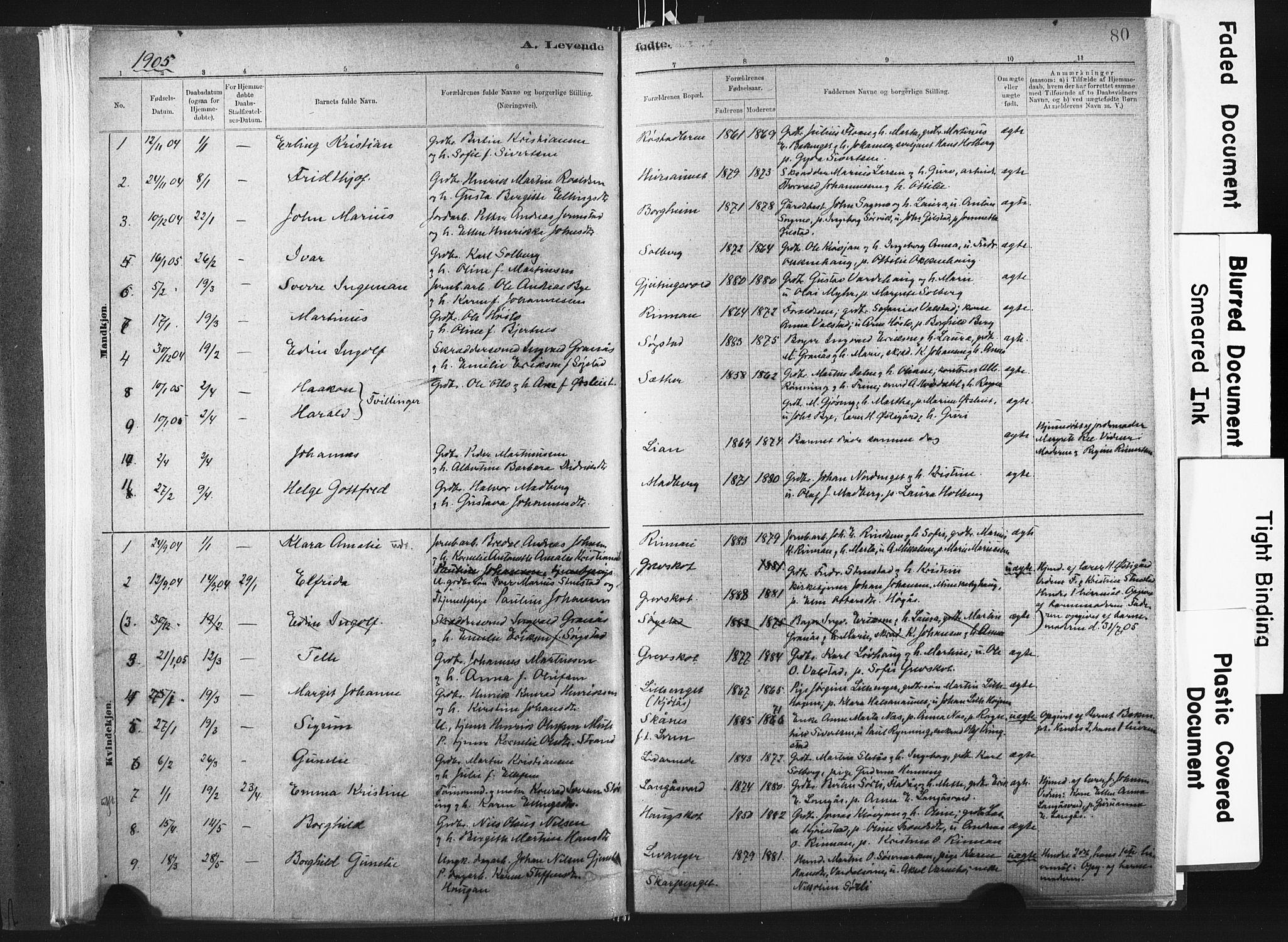 SAT, Ministerialprotokoller, klokkerbøker og fødselsregistre - Nord-Trøndelag, 721/L0207: Ministerialbok nr. 721A02, 1880-1911, s. 80