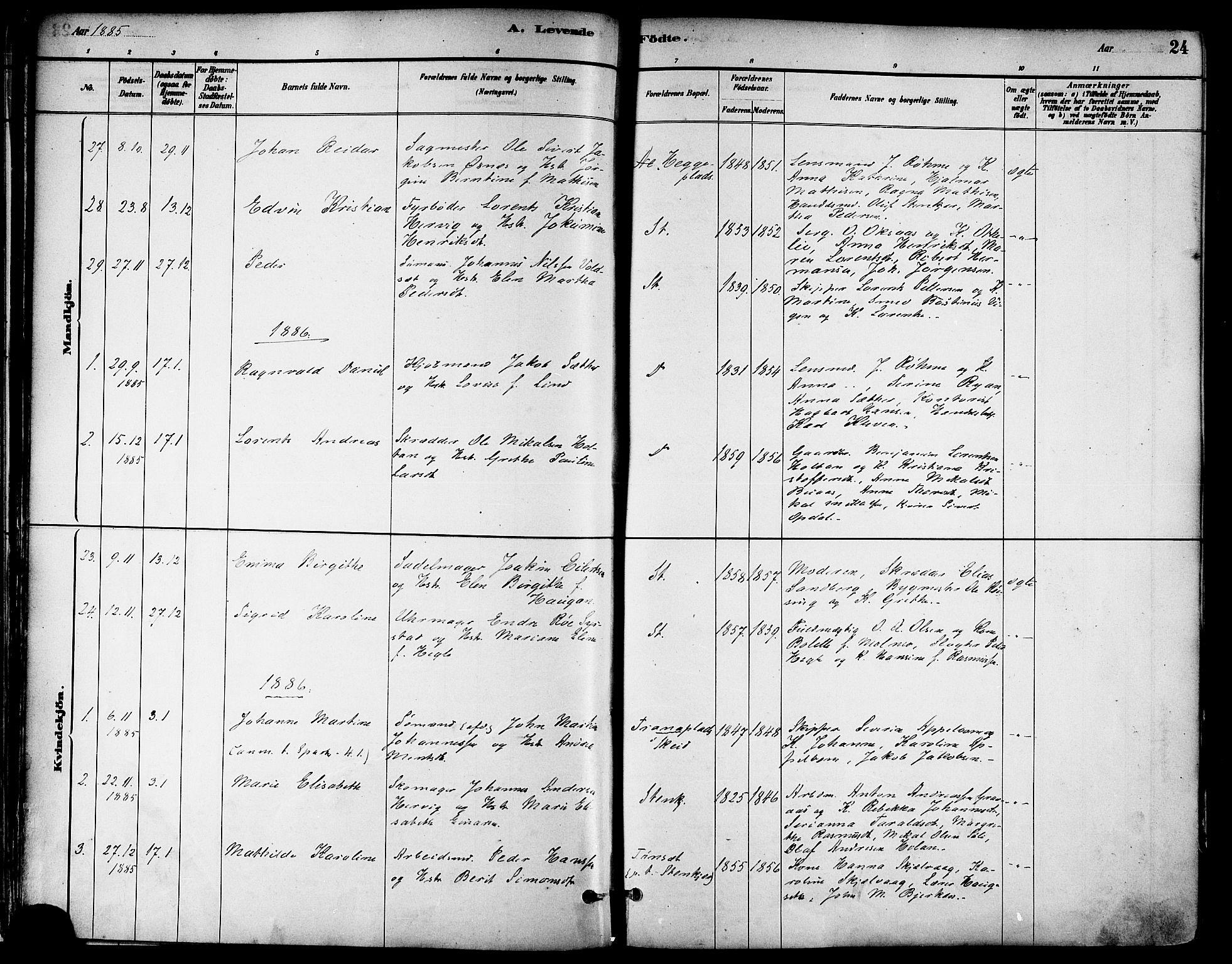 SAT, Ministerialprotokoller, klokkerbøker og fødselsregistre - Nord-Trøndelag, 739/L0371: Ministerialbok nr. 739A03, 1881-1895, s. 24