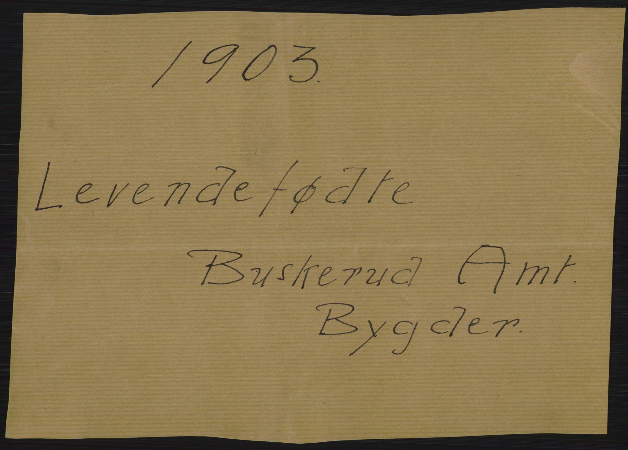RA, Statistisk sentralbyrå, Sosiodemografiske emner, Befolkning, D/Df/Dfa/Dfaa/L0007: Buskeruds amt: Fødte, gifte, døde, 1903