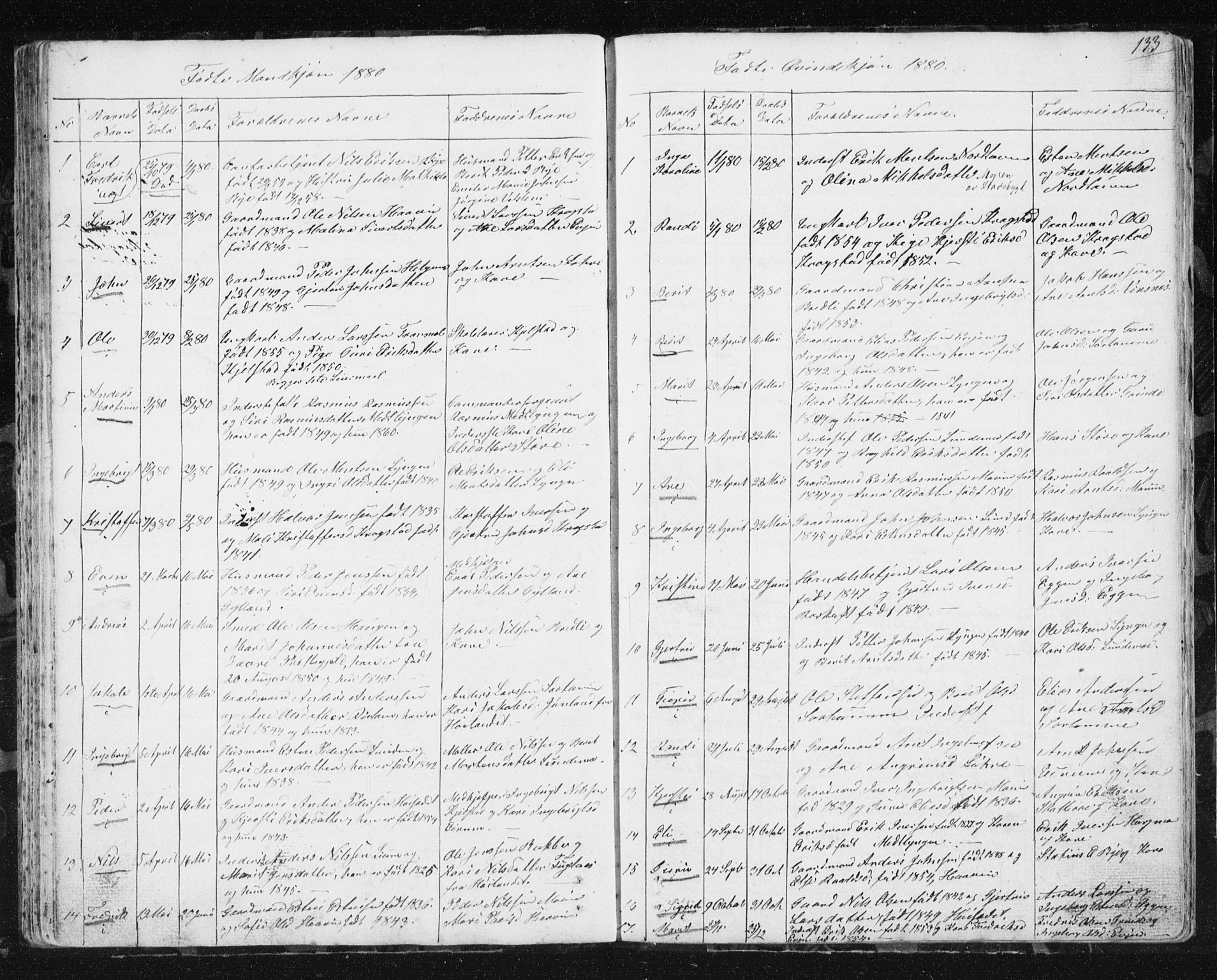 SAT, Ministerialprotokoller, klokkerbøker og fødselsregistre - Sør-Trøndelag, 692/L1110: Klokkerbok nr. 692C05, 1849-1889, s. 133
