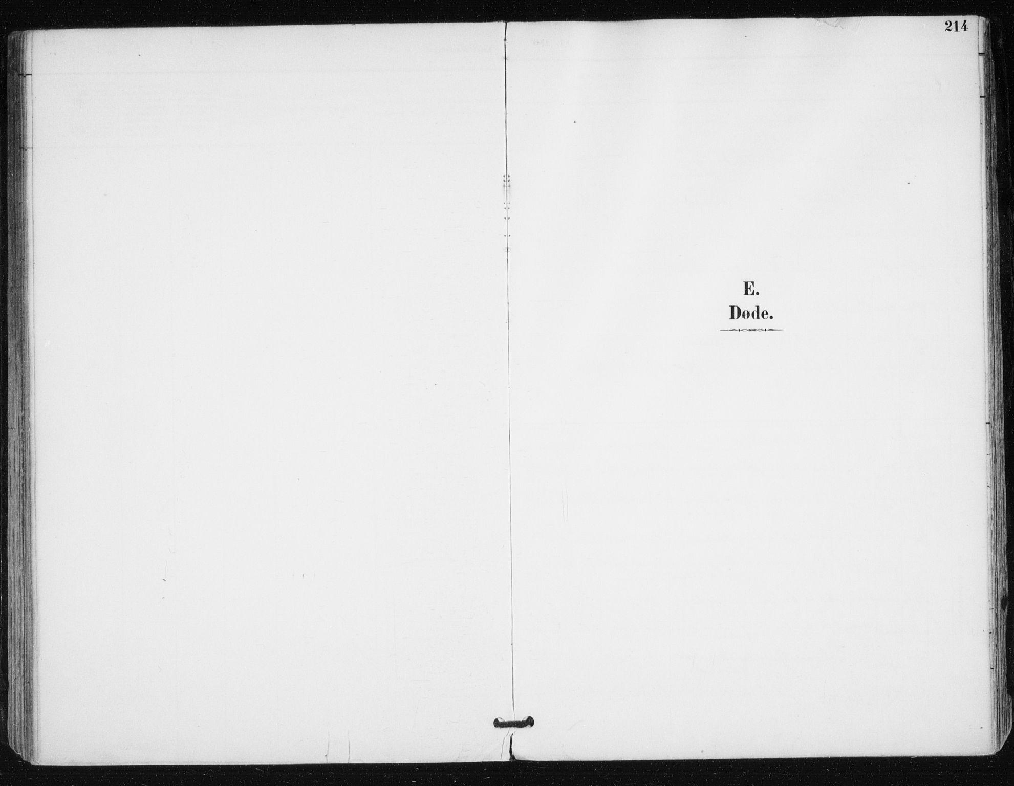 SATØ, Tana sokneprestkontor, H/Ha/L0005kirke: Ministerialbok nr. 5, 1891-1903, s. 214