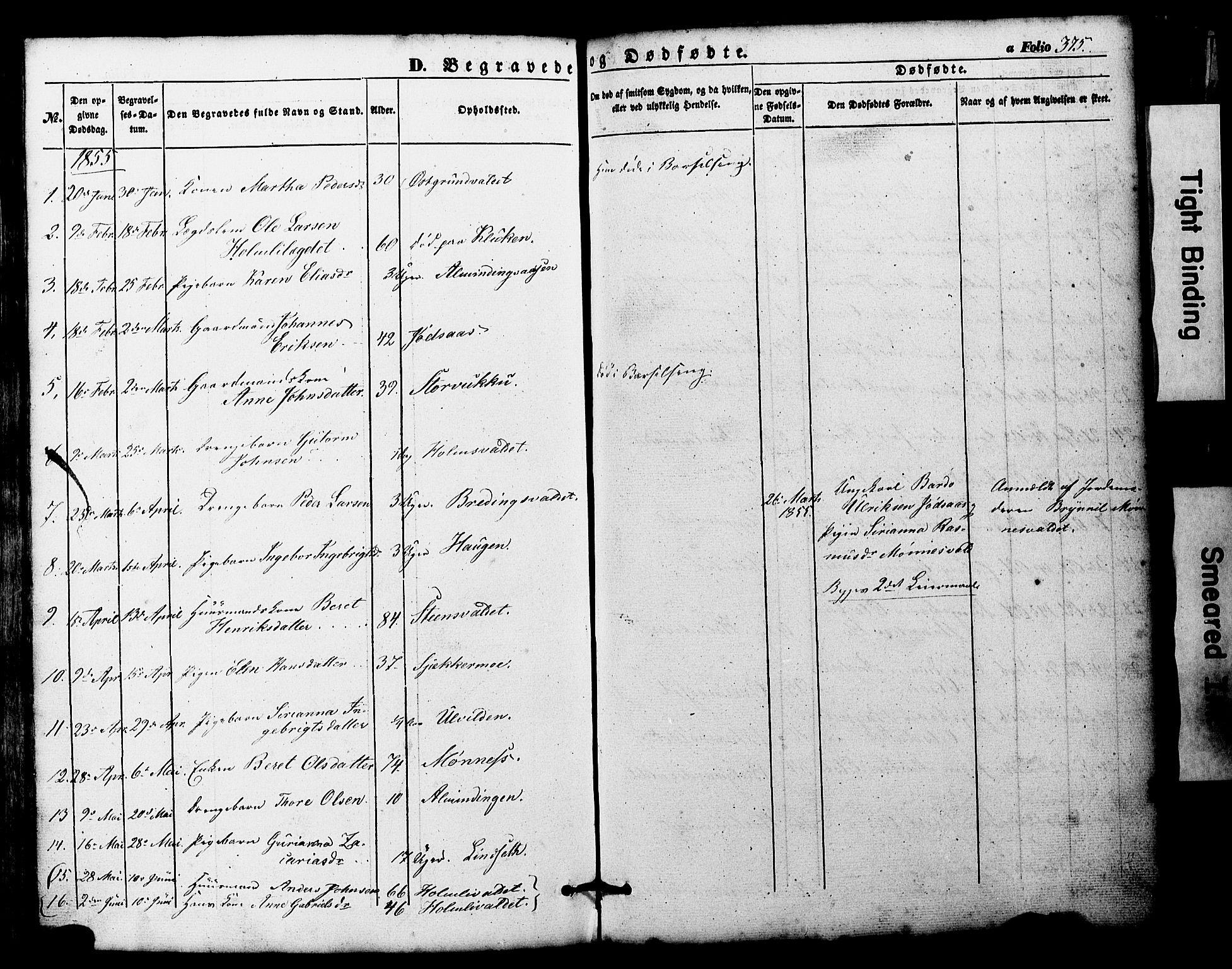 SAT, Ministerialprotokoller, klokkerbøker og fødselsregistre - Nord-Trøndelag, 724/L0268: Klokkerbok nr. 724C04, 1846-1878, s. 375