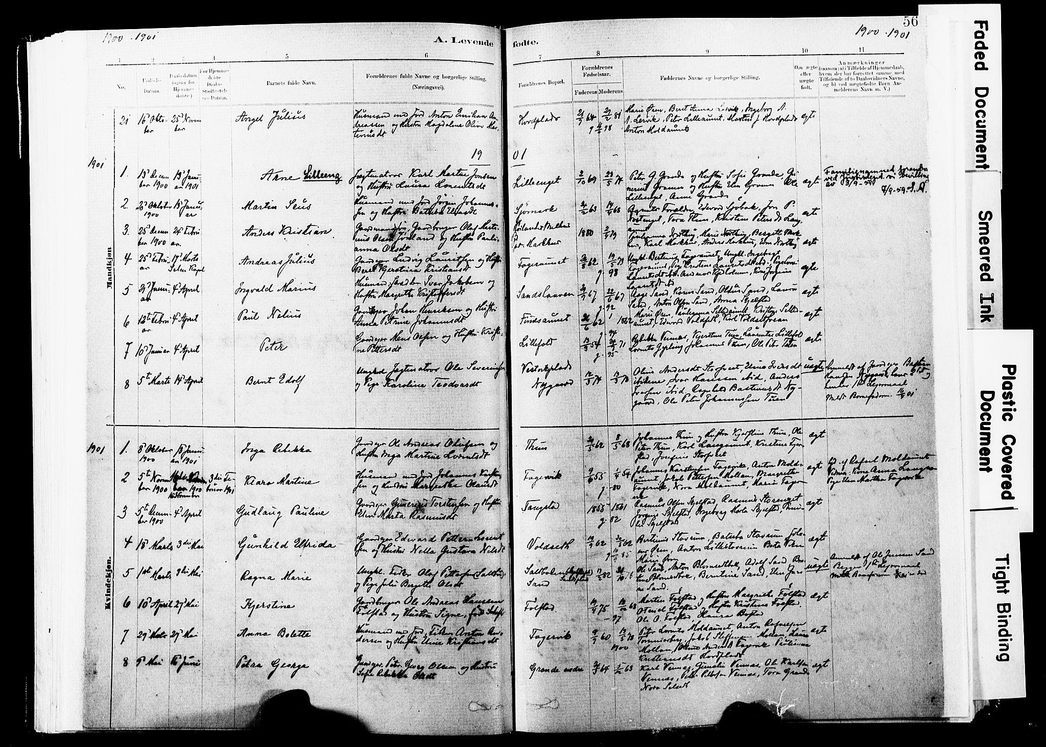 SAT, Ministerialprotokoller, klokkerbøker og fødselsregistre - Nord-Trøndelag, 744/L0420: Ministerialbok nr. 744A04, 1882-1904, s. 56