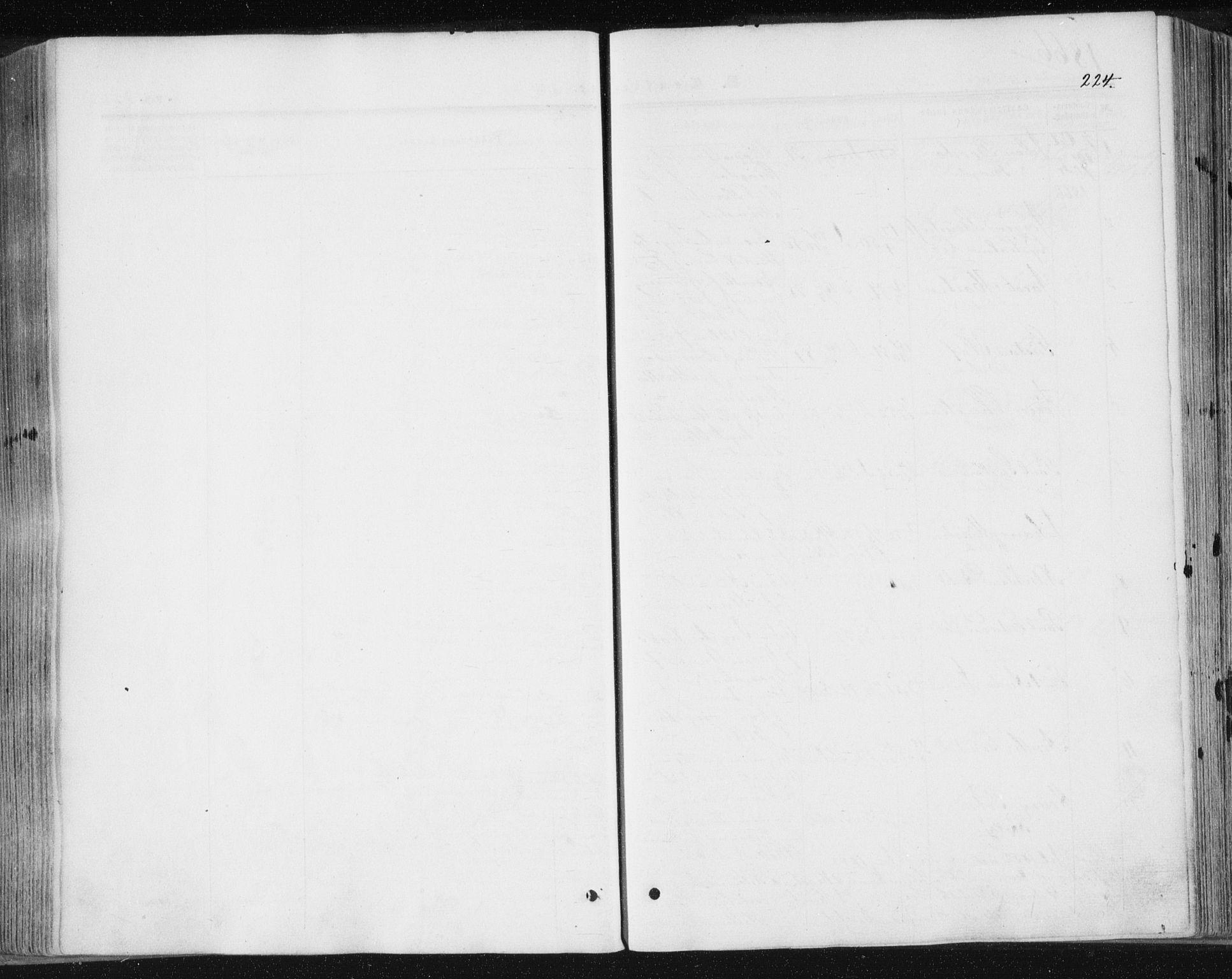SAT, Ministerialprotokoller, klokkerbøker og fødselsregistre - Sør-Trøndelag, 602/L0115: Ministerialbok nr. 602A13, 1860-1872, s. 224