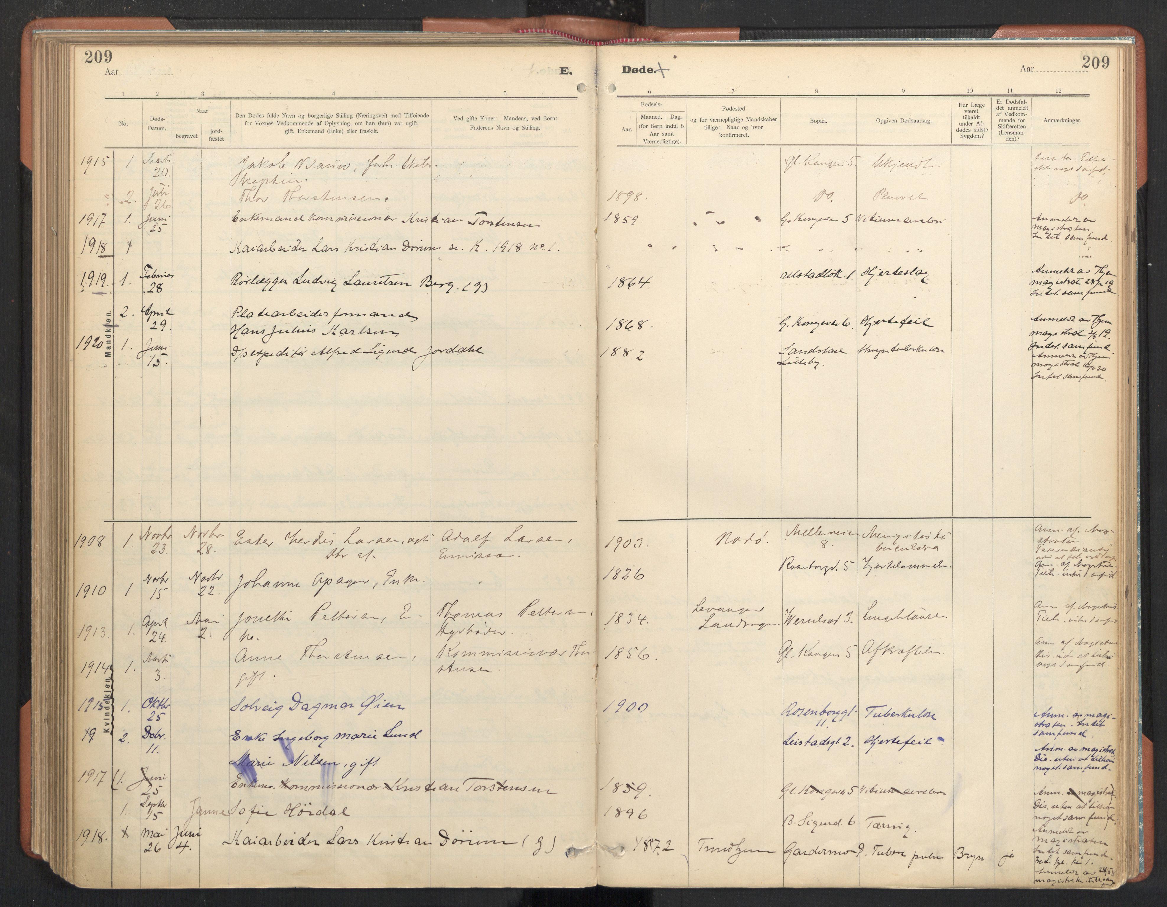 SAT, Ministerialprotokoller, klokkerbøker og fødselsregistre - Sør-Trøndelag, 605/L0244: Ministerialbok nr. 605A06, 1908-1954, s. 209