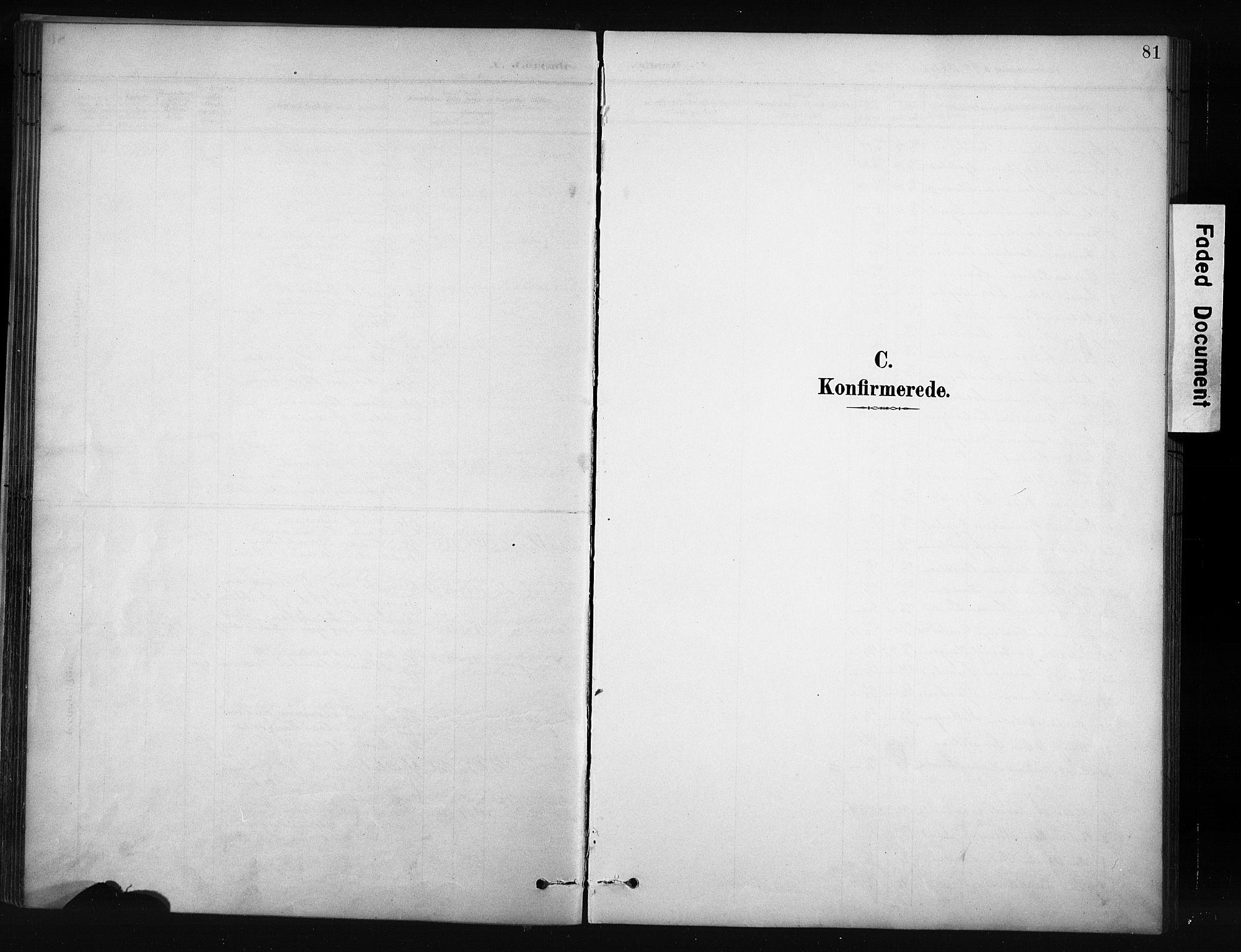SAH, Nordre Land prestekontor, Klokkerbok nr. 12, 1891-1909, s. 81