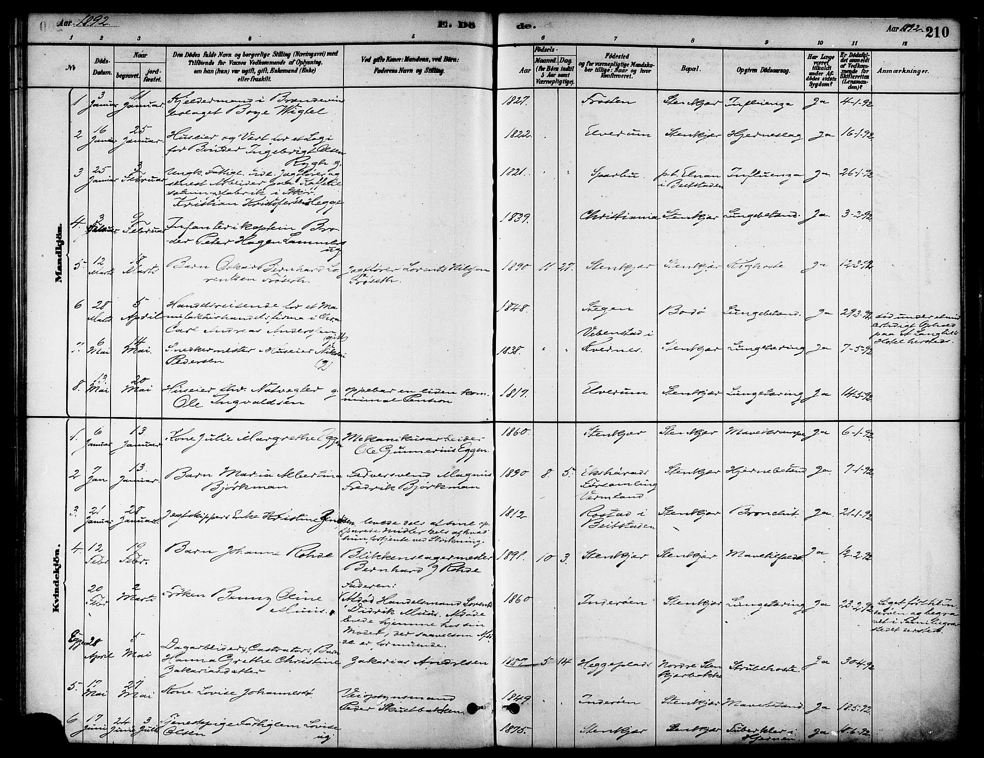 SAT, Ministerialprotokoller, klokkerbøker og fødselsregistre - Nord-Trøndelag, 739/L0371: Ministerialbok nr. 739A03, 1881-1895, s. 210