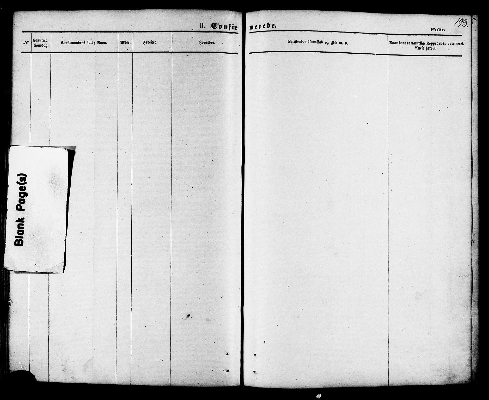 SAT, Ministerialprotokoller, klokkerbøker og fødselsregistre - Nordland, 853/L0771: Ministerialbok nr. 853A10, 1870-1881, s. 193