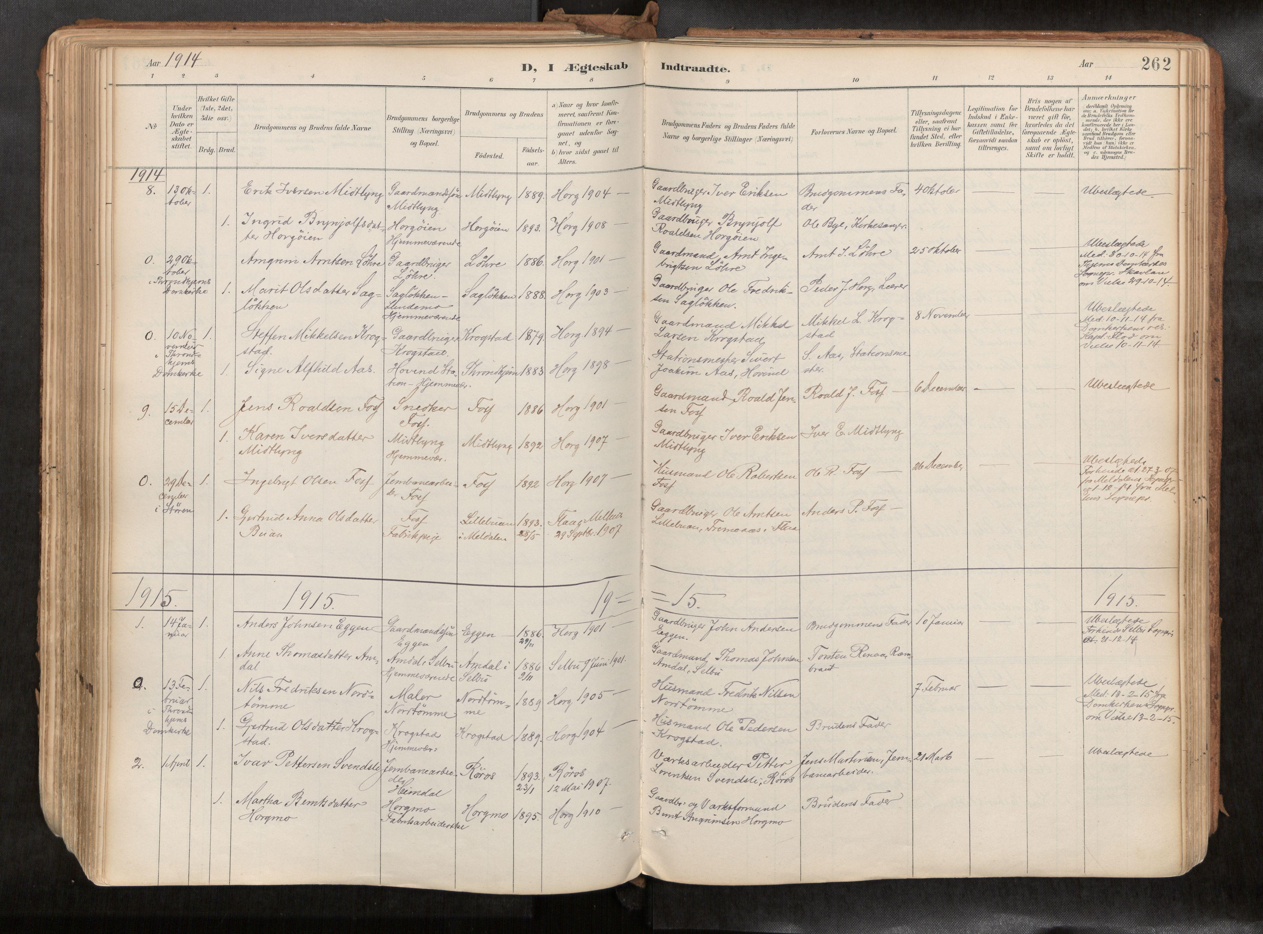SAT, Ministerialprotokoller, klokkerbøker og fødselsregistre - Sør-Trøndelag, 692/L1105b: Ministerialbok nr. 692A06, 1891-1934, s. 262