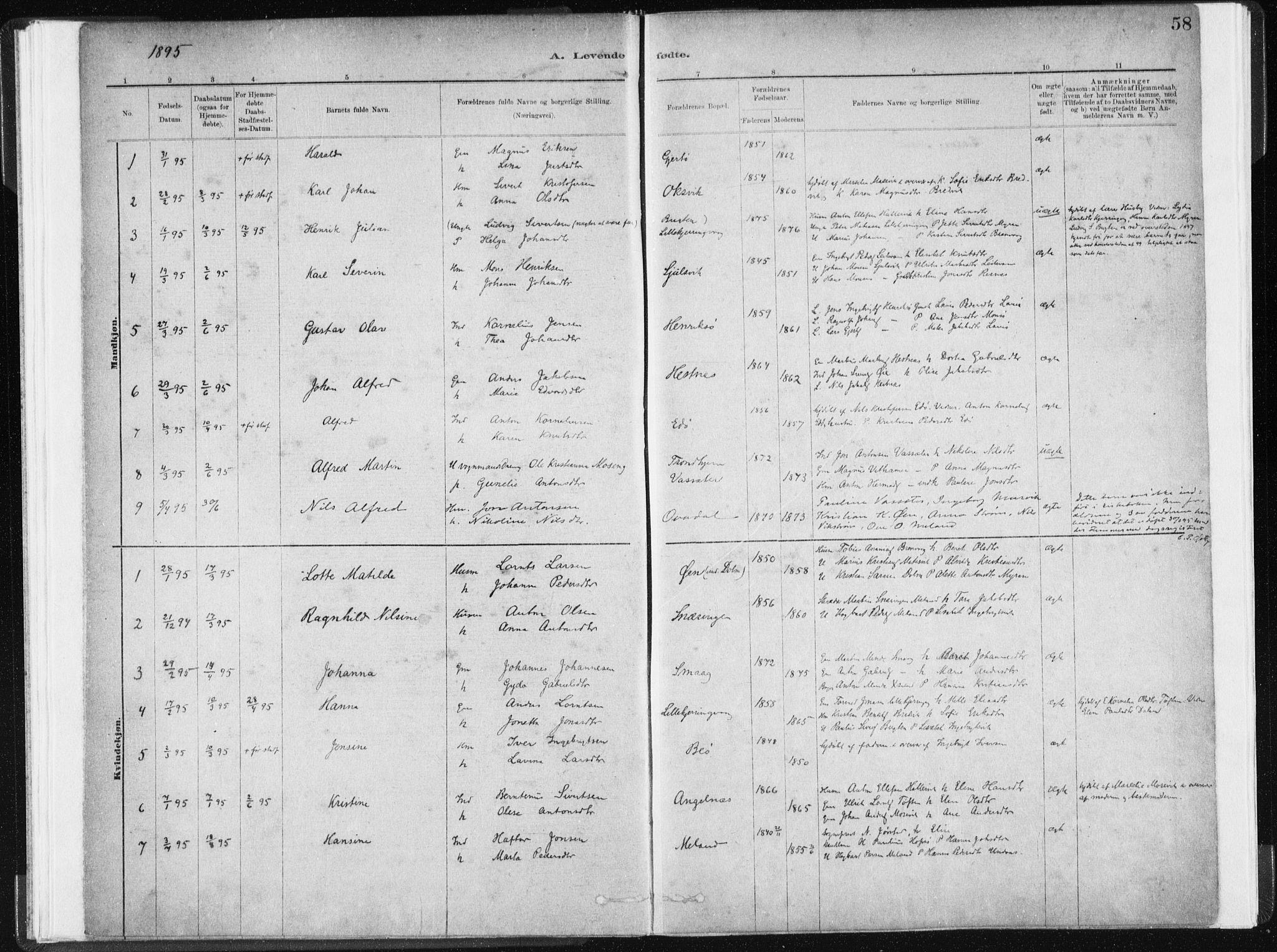 SAT, Ministerialprotokoller, klokkerbøker og fødselsregistre - Sør-Trøndelag, 634/L0533: Ministerialbok nr. 634A09, 1882-1901, s. 58