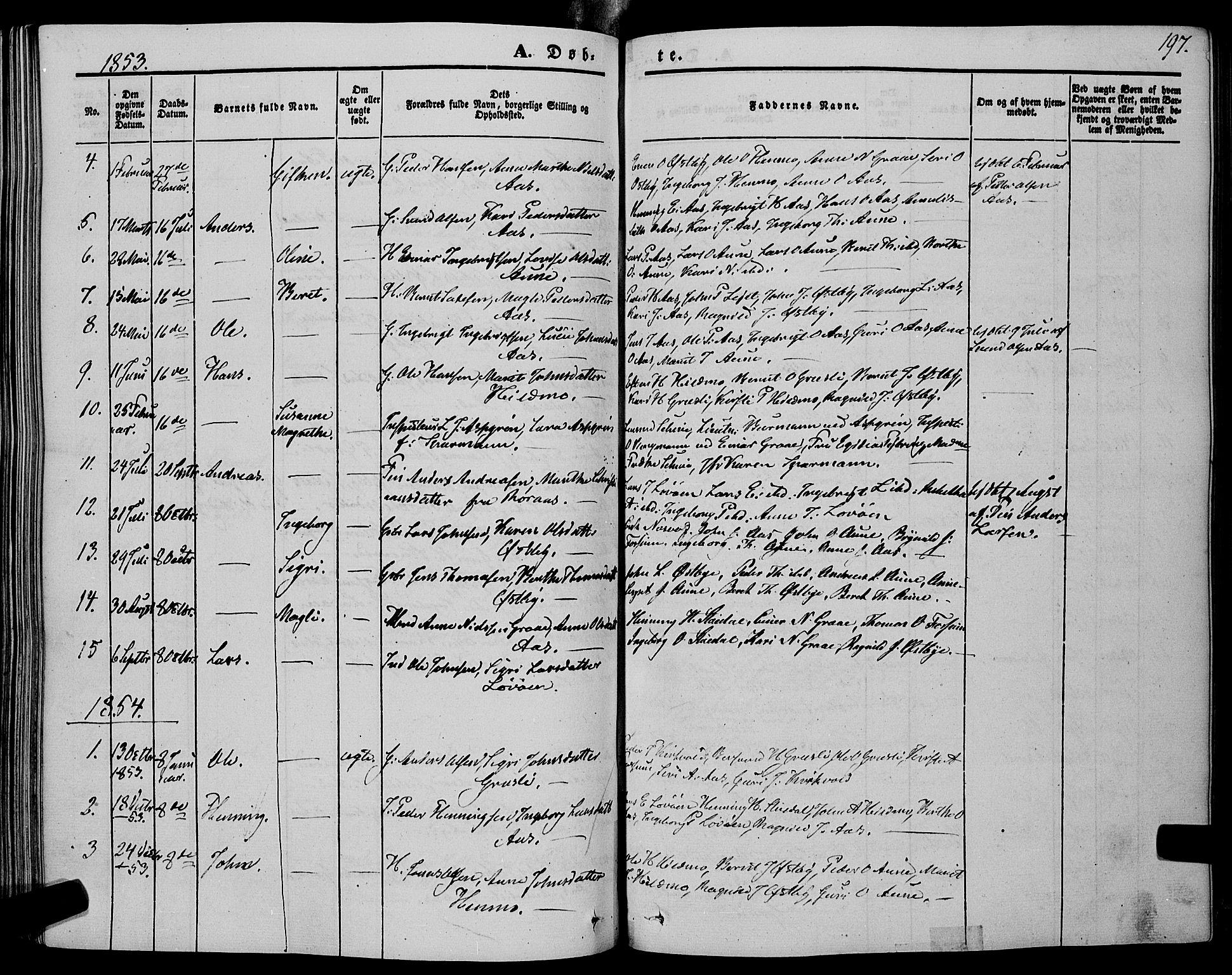 SAT, Ministerialprotokoller, klokkerbøker og fødselsregistre - Sør-Trøndelag, 695/L1146: Ministerialbok nr. 695A06 /2, 1843-1859, s. 197