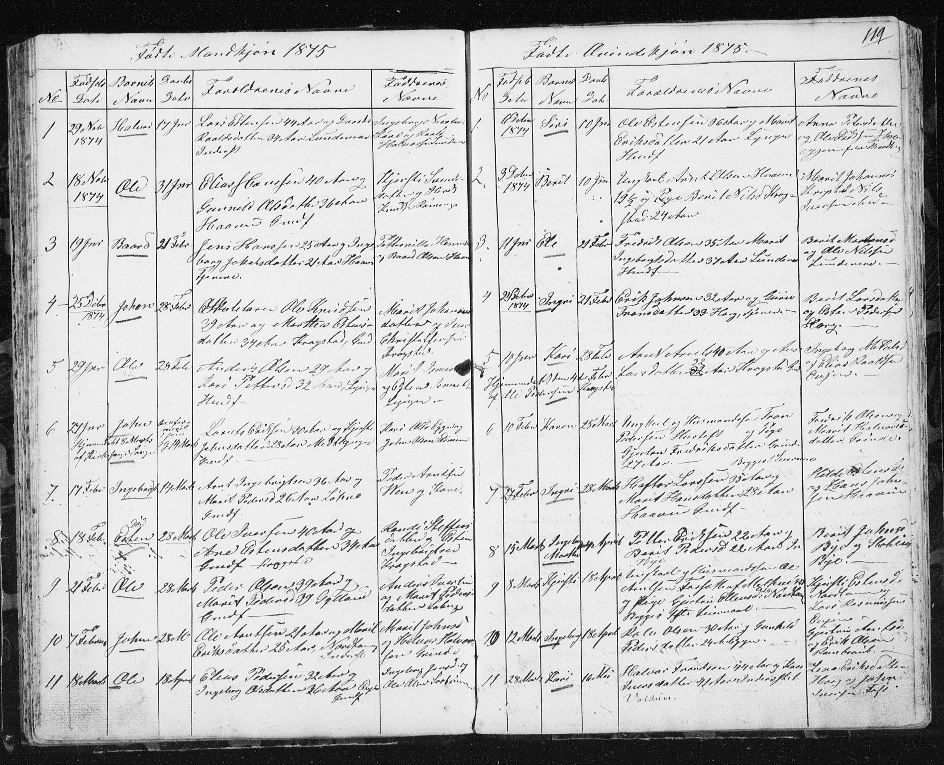 SAT, Ministerialprotokoller, klokkerbøker og fødselsregistre - Sør-Trøndelag, 692/L1110: Klokkerbok nr. 692C05, 1849-1889, s. 119