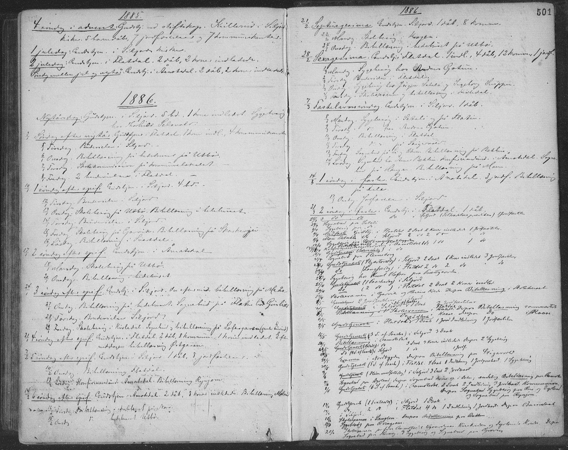 SAKO, Seljord kirkebøker, F/Fa/L0014: Ministerialbok nr. I 14, 1877-1886, s. 501