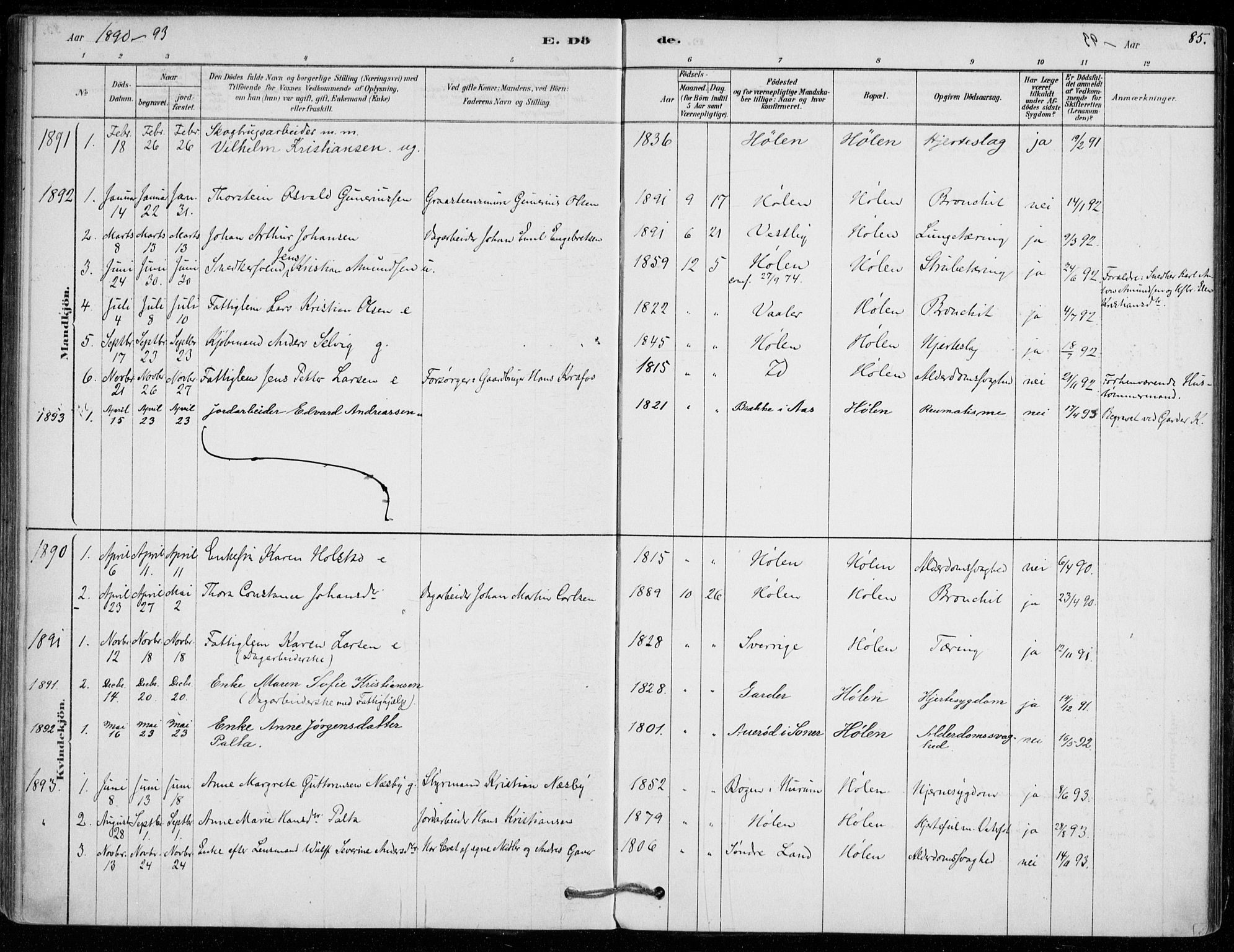 SAO, Vestby prestekontor Kirkebøker, F/Fe/L0001: Ministerialbok nr. V 1, 1878-1931, s. 85