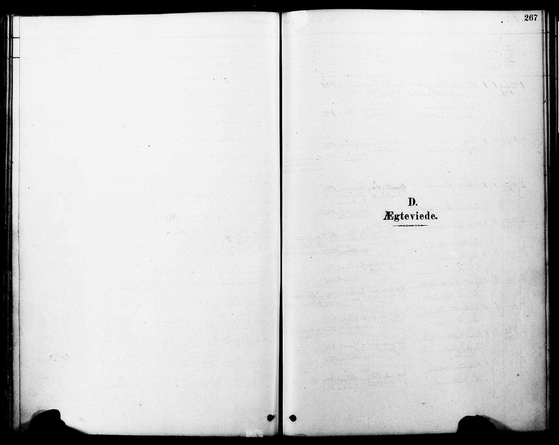 SAT, Ministerialprotokoller, klokkerbøker og fødselsregistre - Møre og Romsdal, 560/L0721: Ministerialbok nr. 560A05, 1878-1917, s. 267