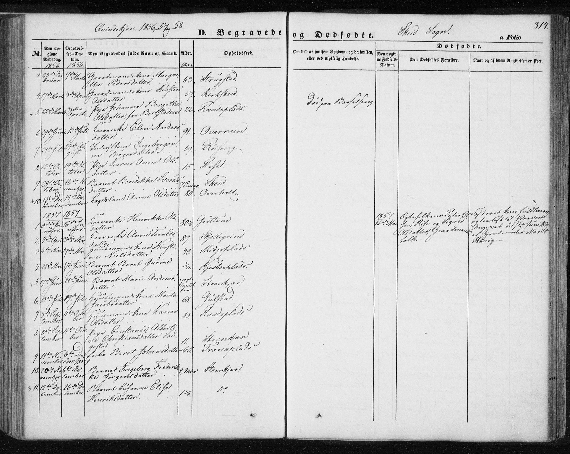 SAT, Ministerialprotokoller, klokkerbøker og fødselsregistre - Nord-Trøndelag, 735/L0342: Ministerialbok nr. 735A07 /2, 1849-1862, s. 314