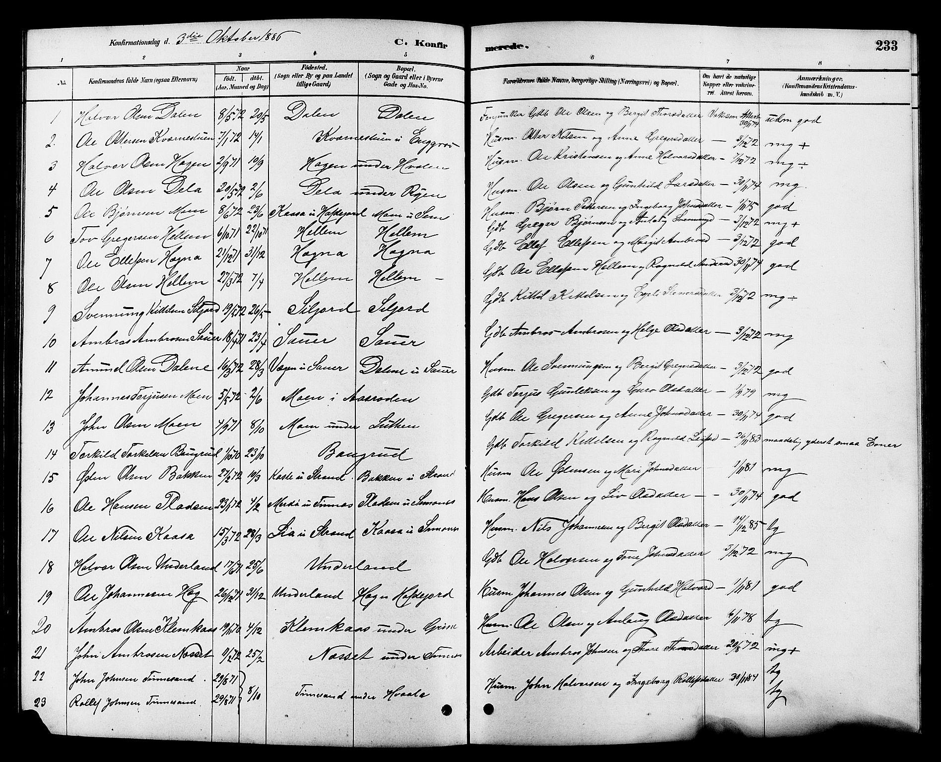 SAKO, Heddal kirkebøker, G/Ga/L0002: Klokkerbok nr. I 2, 1879-1908, s. 233