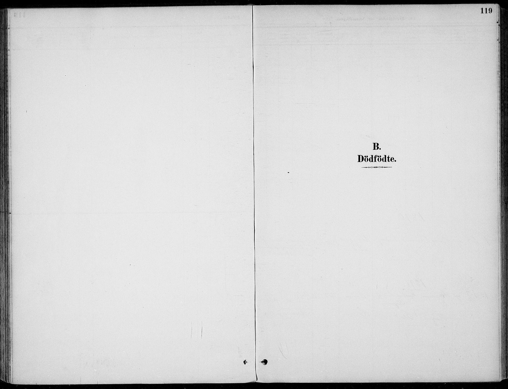 SAKO, Sigdal kirkebøker, F/Fb/L0001: Ministerialbok nr. II 1, 1888-1900, s. 119