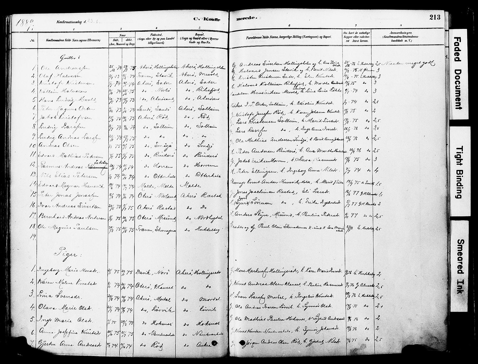 SAT, Ministerialprotokoller, klokkerbøker og fødselsregistre - Møre og Romsdal, 560/L0721: Ministerialbok nr. 560A05, 1878-1917, s. 213