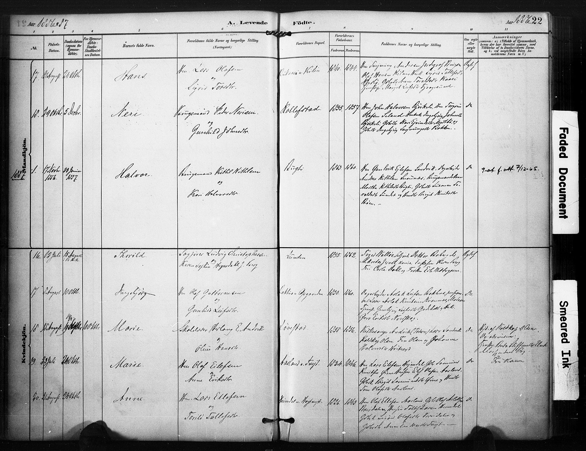 SAKO, Kviteseid kirkebøker, F/Fa/L0008: Ministerialbok nr. I 8, 1882-1903, s. 22