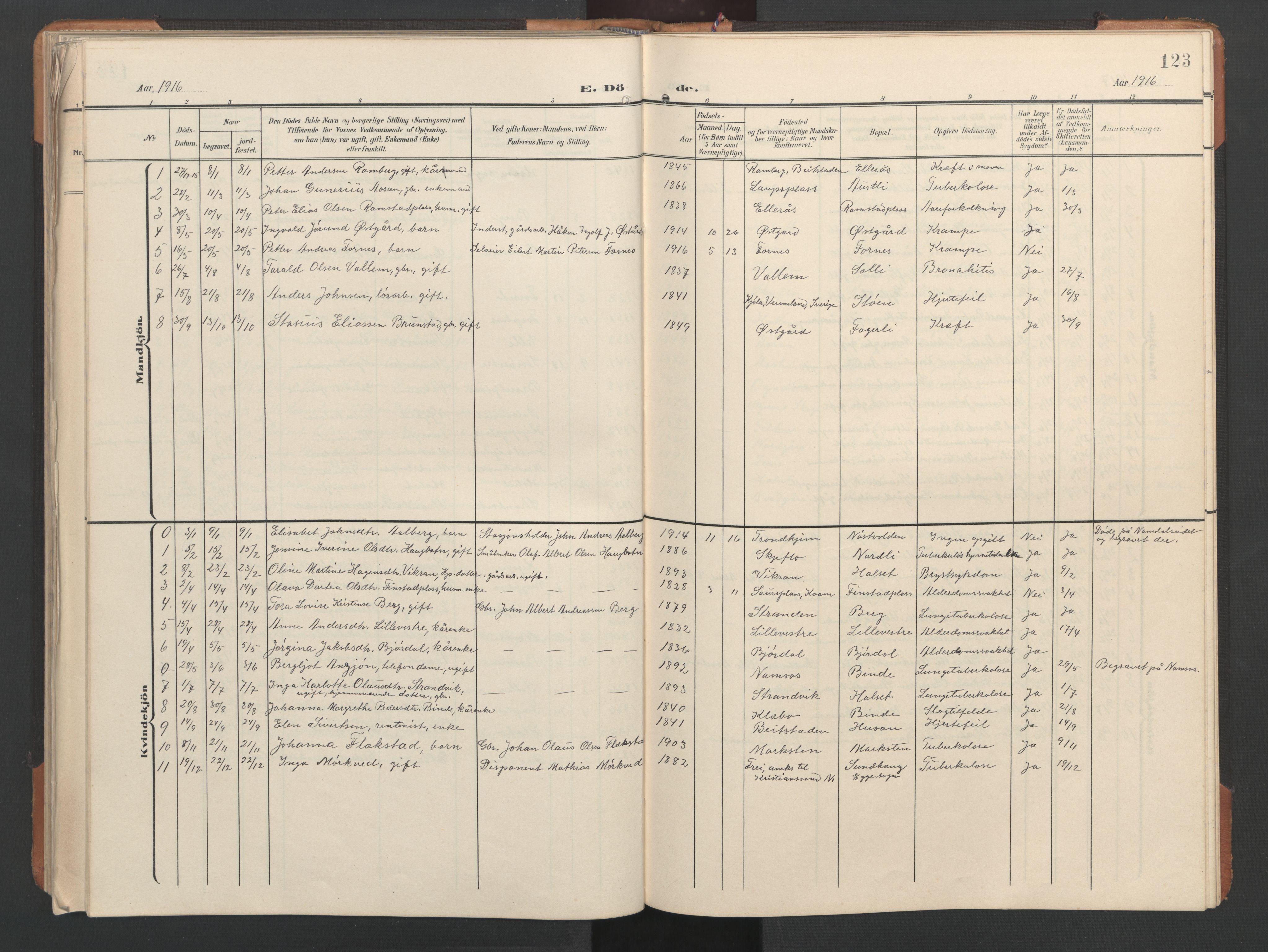 SAT, Ministerialprotokoller, klokkerbøker og fødselsregistre - Nord-Trøndelag, 746/L0455: Klokkerbok nr. 746C01, 1908-1933, s. 123