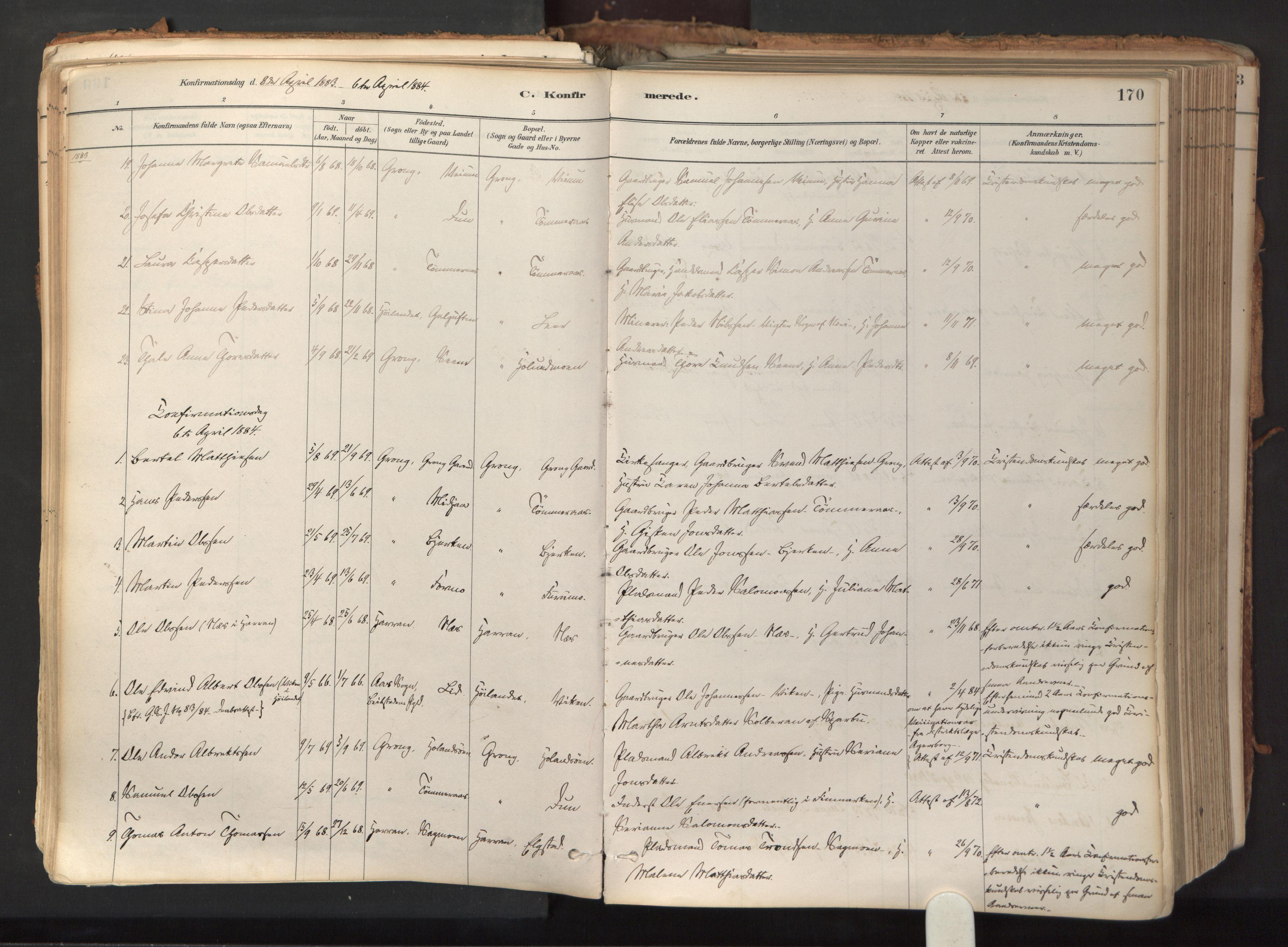 SAT, Ministerialprotokoller, klokkerbøker og fødselsregistre - Nord-Trøndelag, 758/L0519: Ministerialbok nr. 758A04, 1880-1926, s. 170