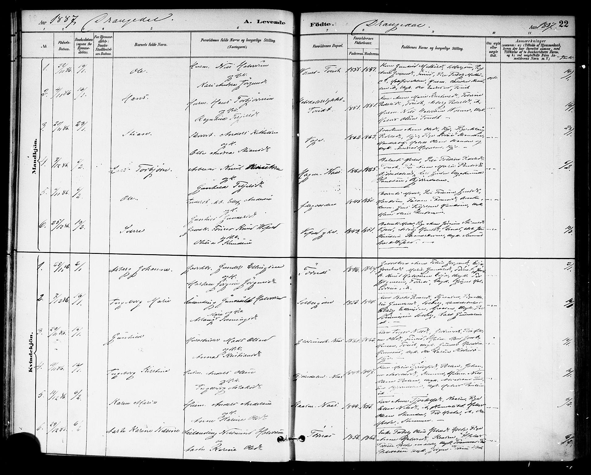 SAKO, Drangedal kirkebøker, F/Fa/L0010: Ministerialbok nr. 10 /1, 1885-1894, s. 22